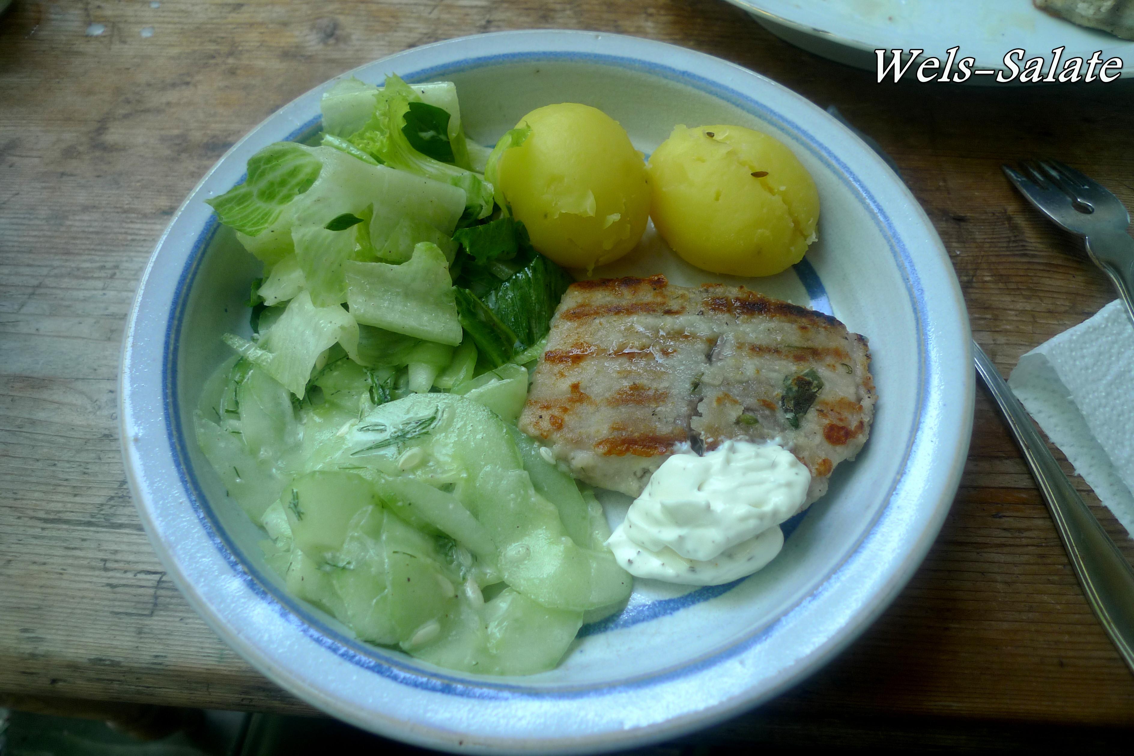 Wels-Salate