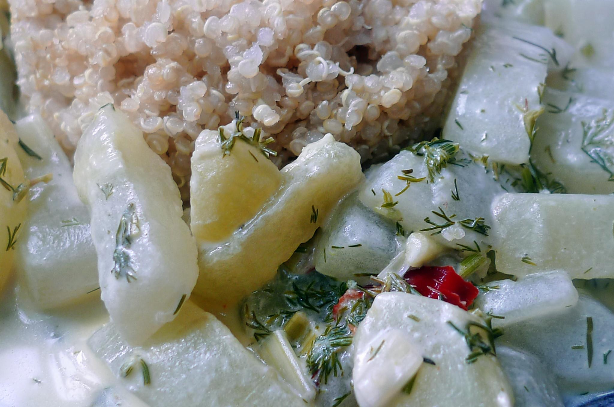Gurkengemüse-Quinoa-29.7.14   (6)