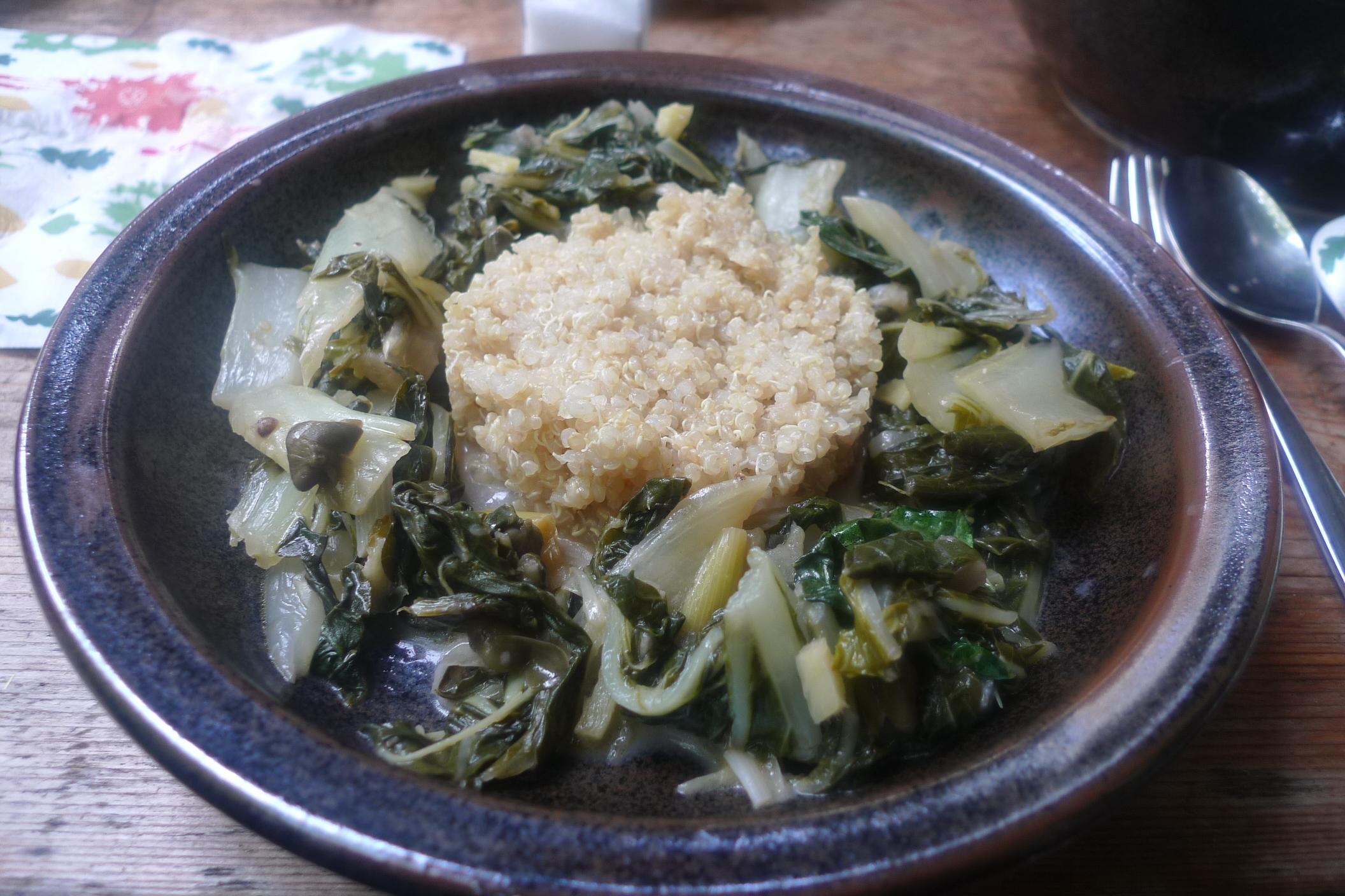 Pak Choi-Quinoa-8.7.2014   (11)