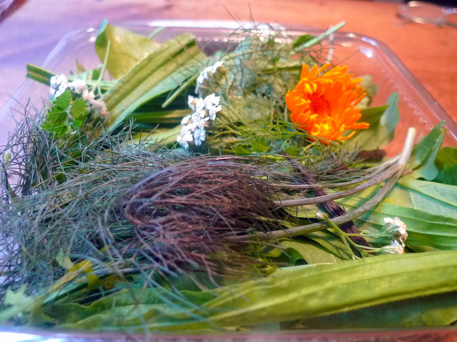Rührei-Wildkräutersalat-Tomatensalat-Kartoffeln-25.7.14   (2)