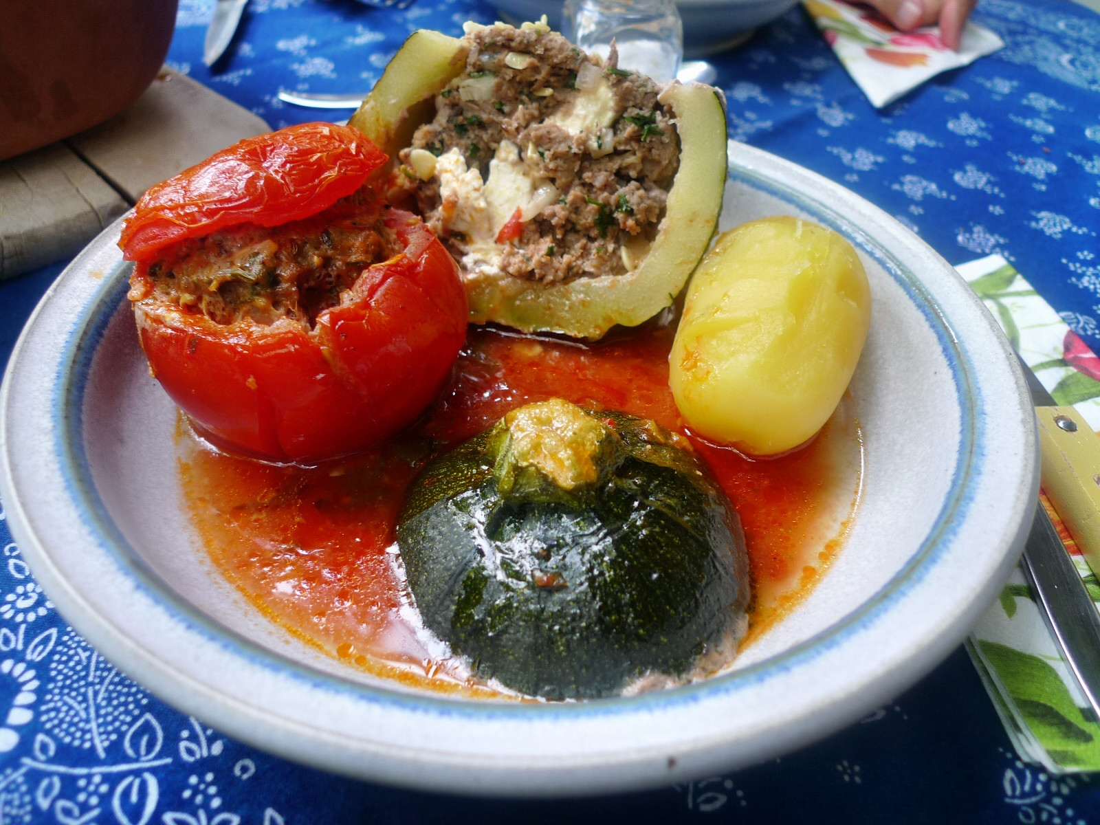 gefüllte Zucchini und Paprika-7.8.14   (3)