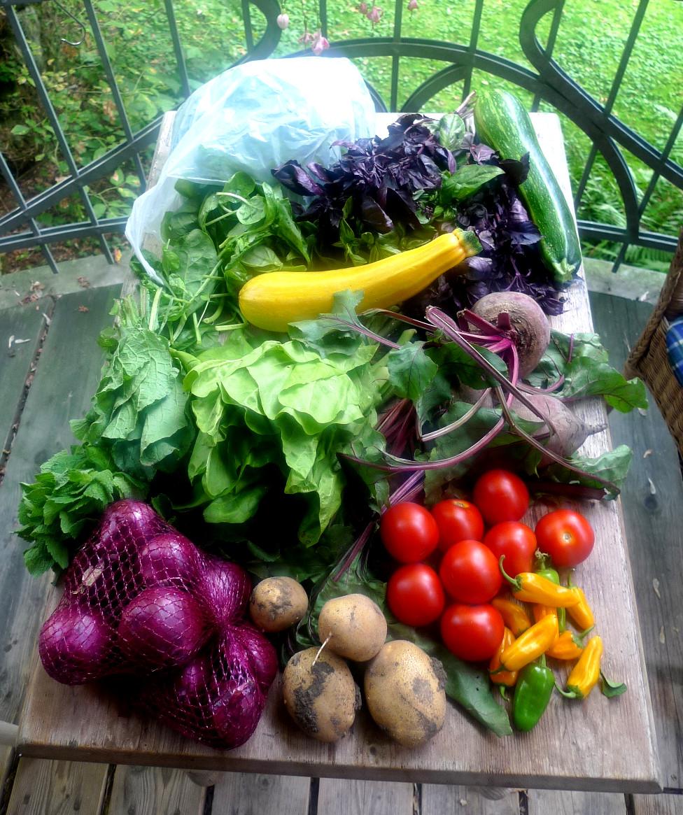 Gemüse vom Markt -22.8 (1)