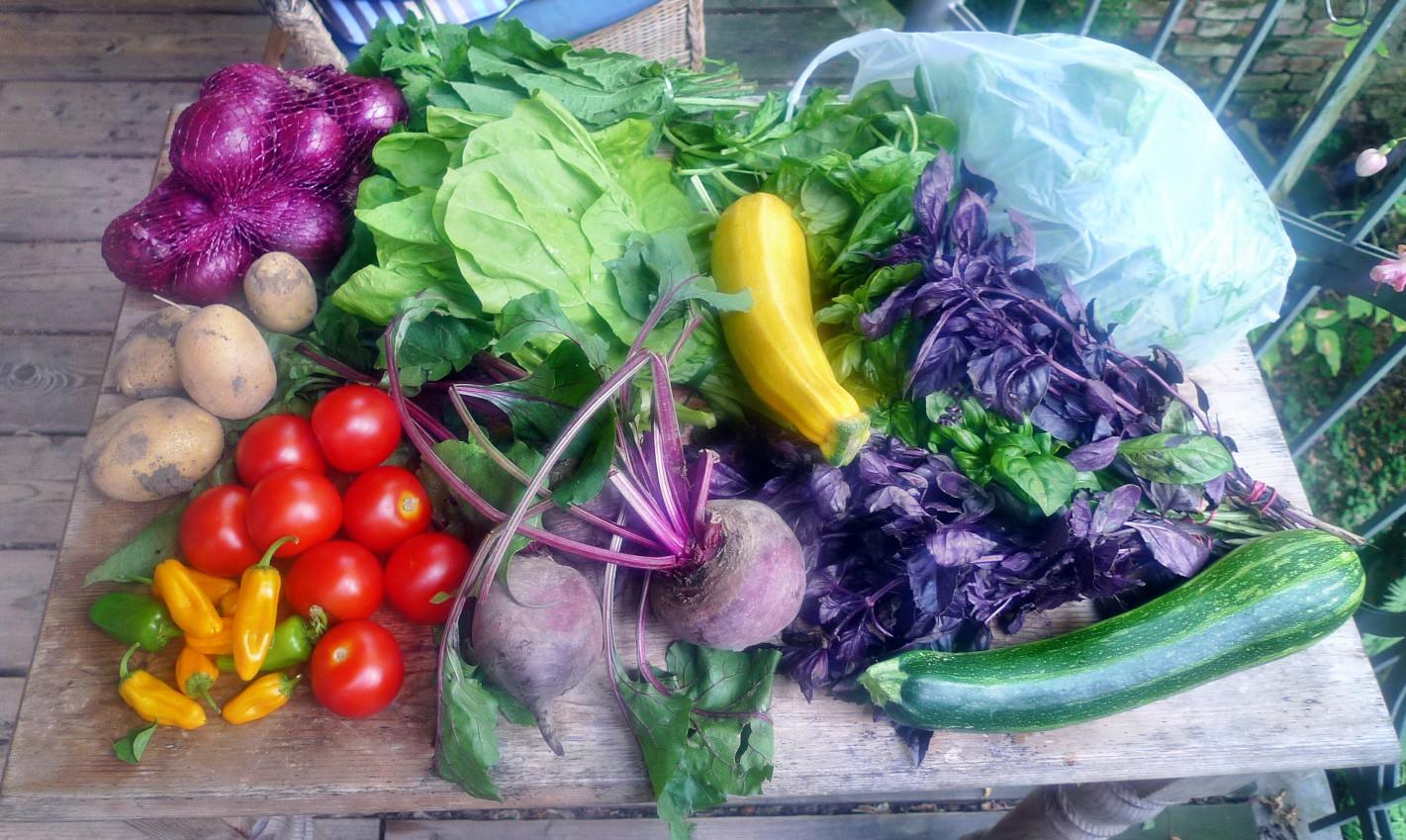 Gemüse vom Markt -22.8 (2)