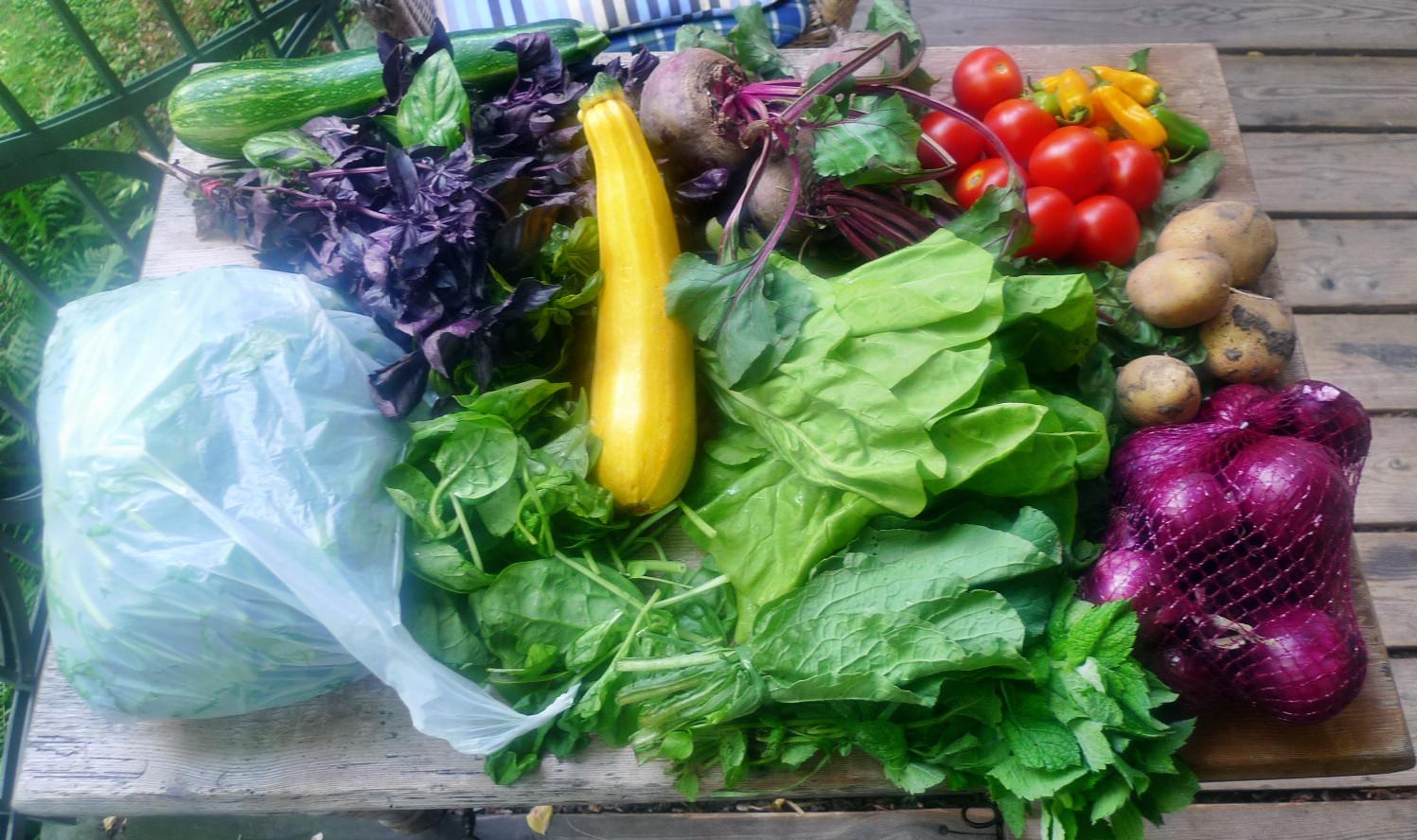 Gemüse vom Markt -22.8 (3)