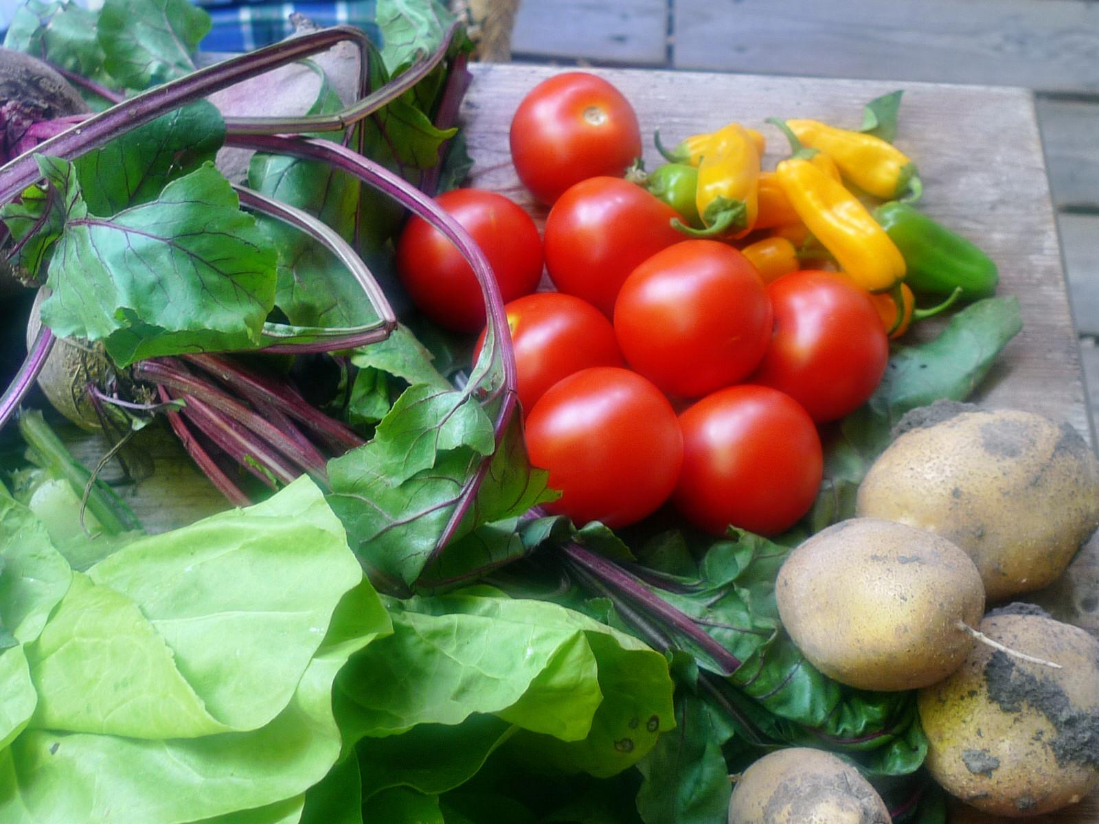 Gemüse vom Markt -22.8 (5)