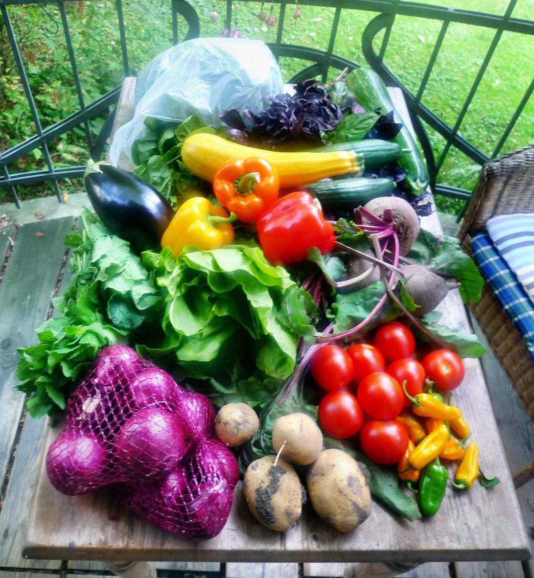 Gemüse vom Markt -22.8 (7)