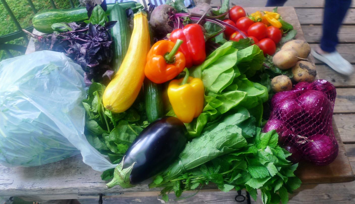 Gemüse vom Markt -22.8 (8)