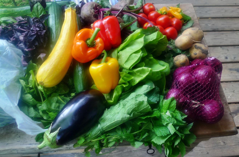 Gemüse vom Markt -22.8 (9)