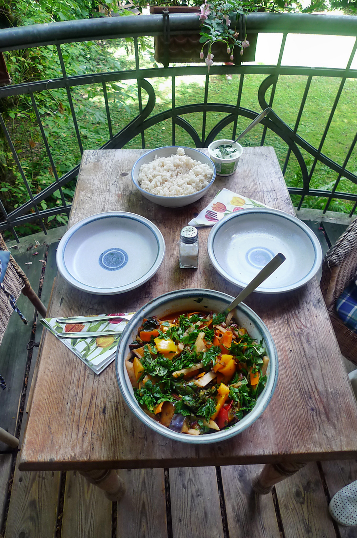 Gemüsepfanne-Reis-2.8.14   (13)
