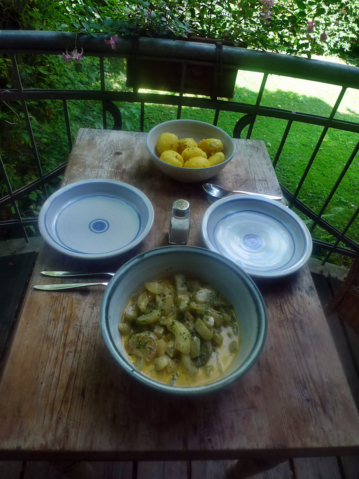 Gurkengemüse-Kartoffel-Mirabellenkompott-8.8.14   (6)