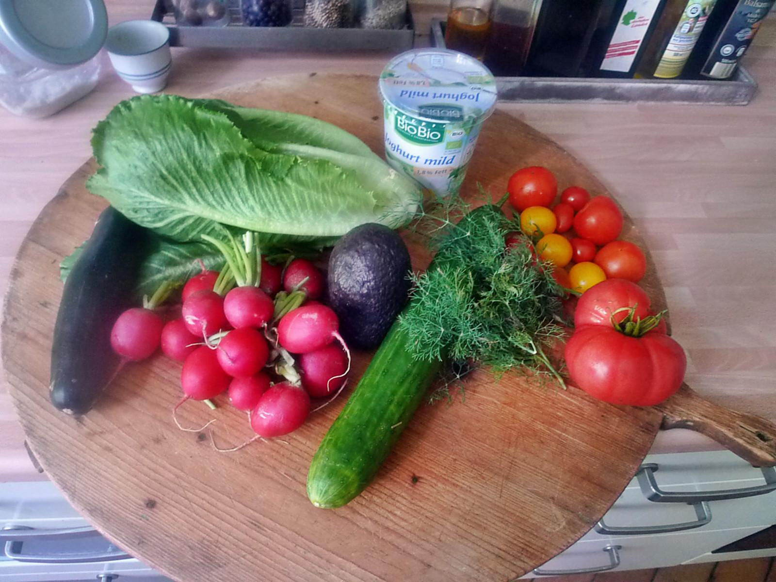 Matjes-Joghurtdip-Salat-14.8.14   (1a)