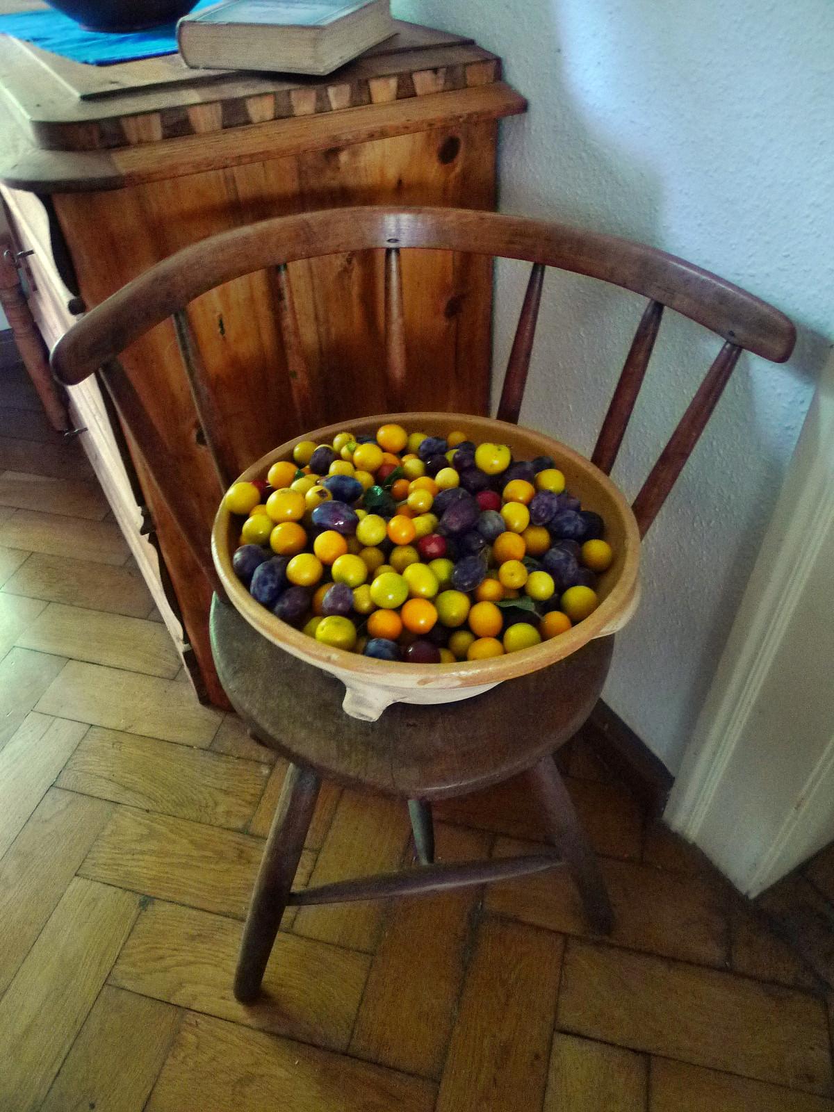 Obst aus Nermsdorf-6.8.14   (3)