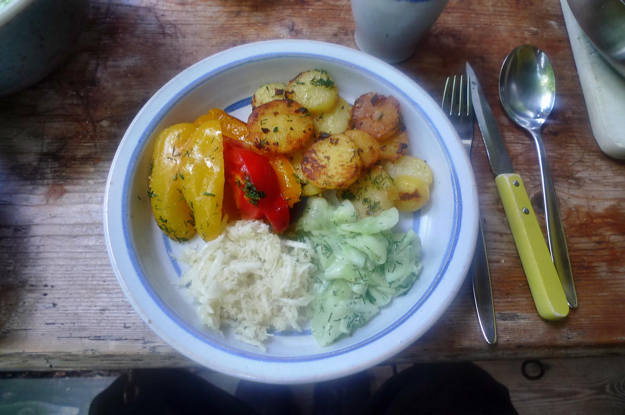 Paprika-Rettichsalat-Gurkensalat-Bratkartoffel-1.8.14   (1)
