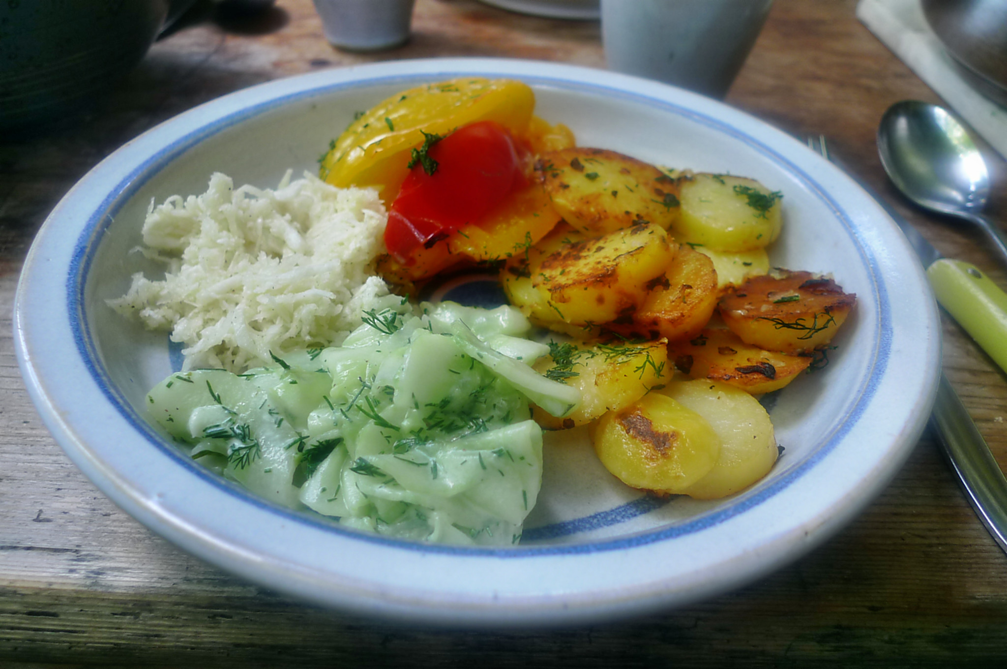 Paprika-Rettichsalat-Gurkensalat-Bratkartoffel-1.8.14   (5)