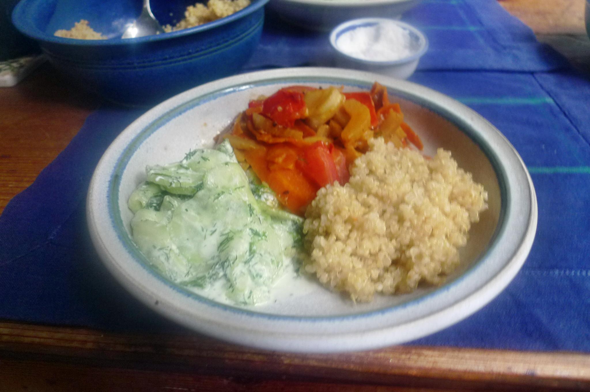 Fenchel,Möhrengemüse,Quinoa,Gurkensalat-15.9.14   (11)
