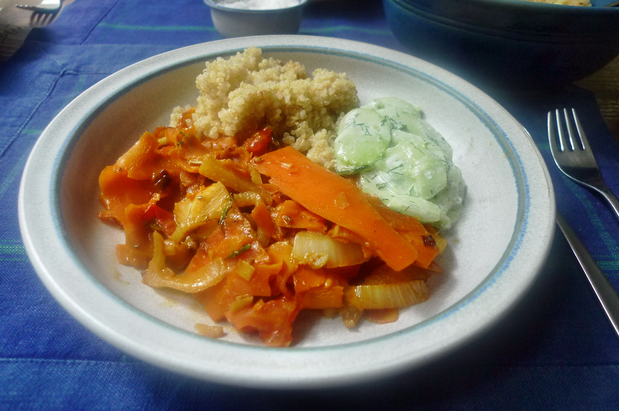 Fenchel,Möhrengemüse,Quinoa,Gurkensalat-15.9.14   (14)