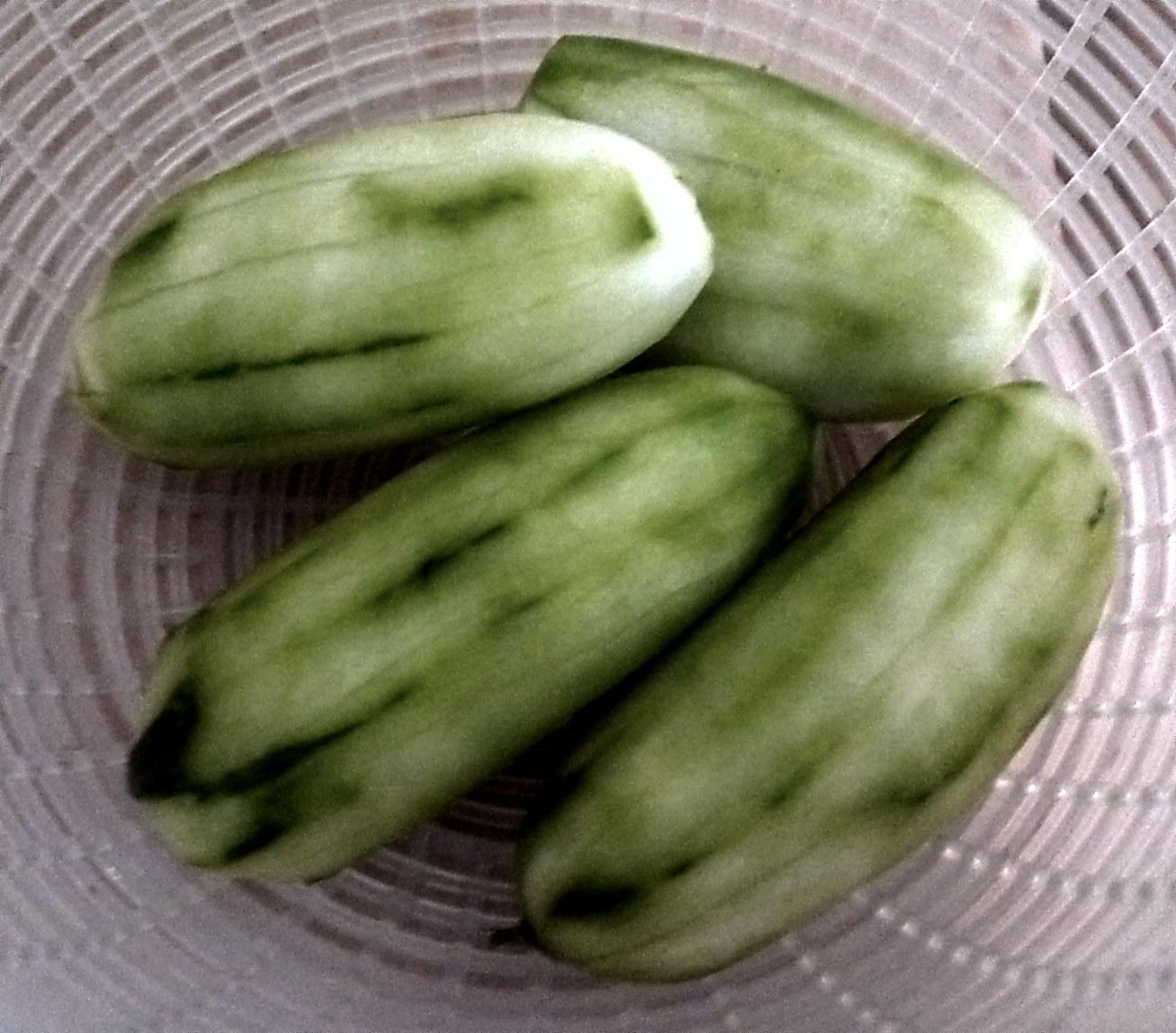 Gurkengemüse-Couscous-4.9.14   (1a)