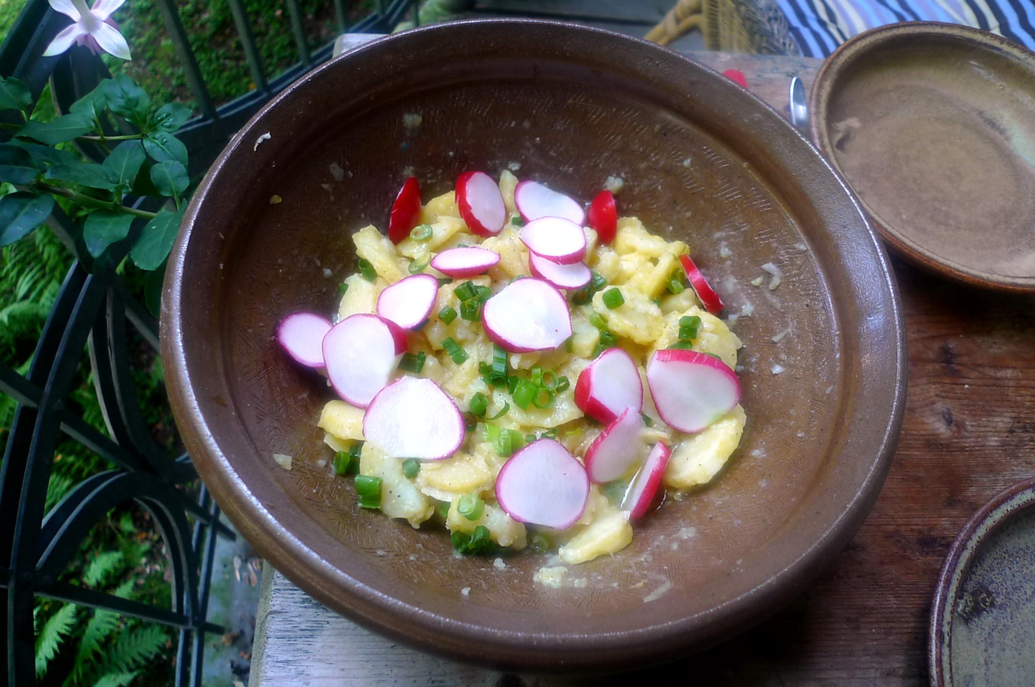 Kartoffelsaöat-Gurkensalat-5.9.14   (9)