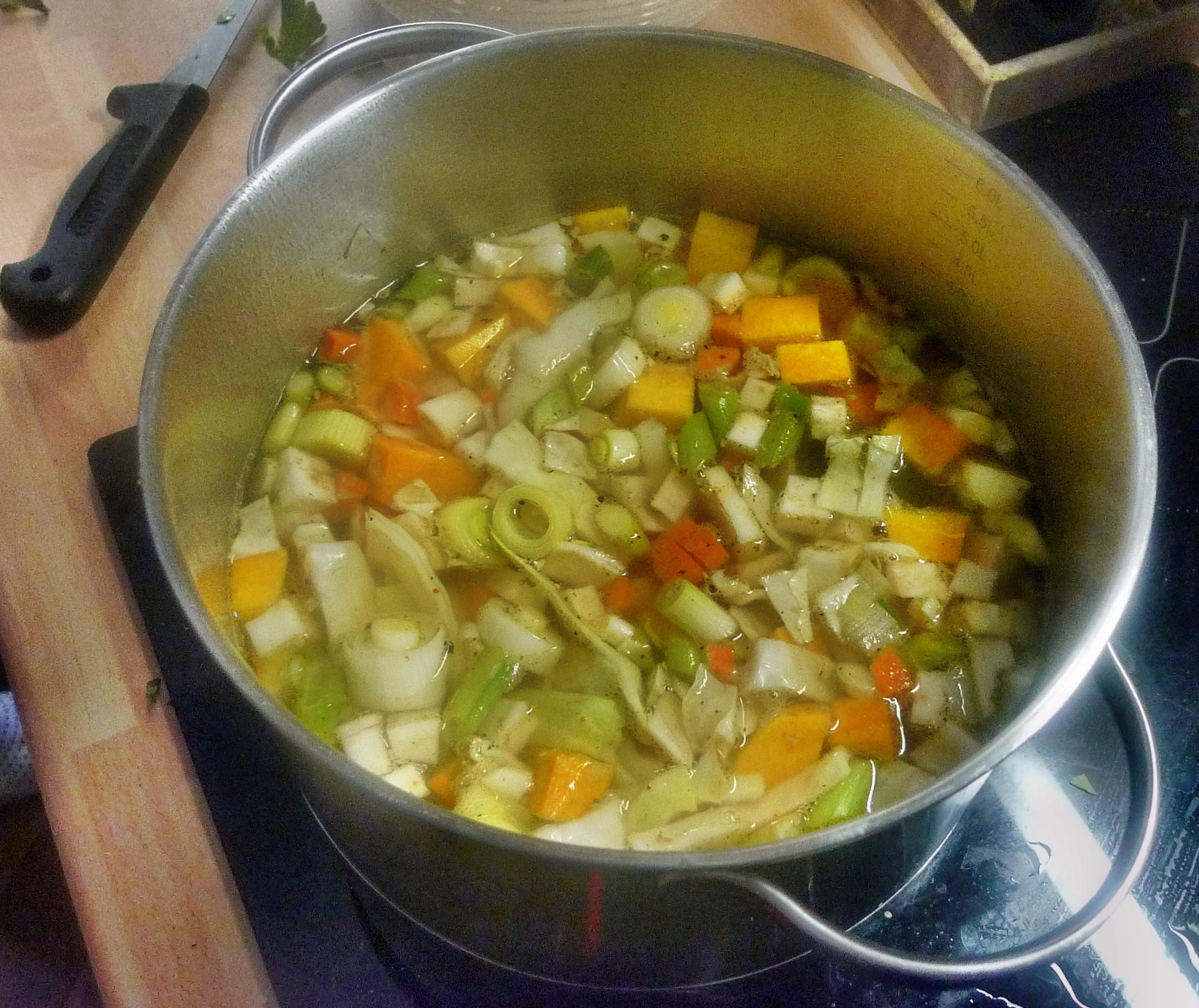 Gemüsesuppe-Birnenmus - 6.10.14   (3)