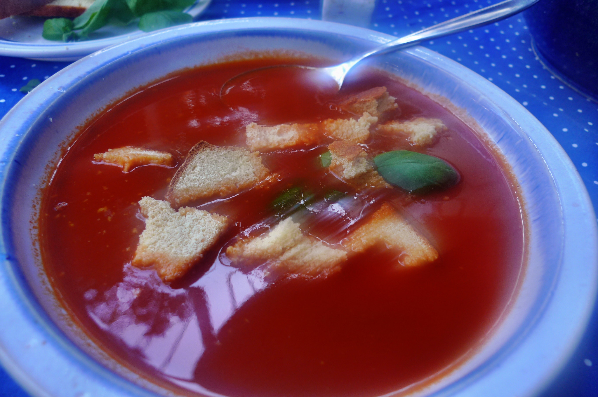 Tomatensuppe-3.10.14   (10)
