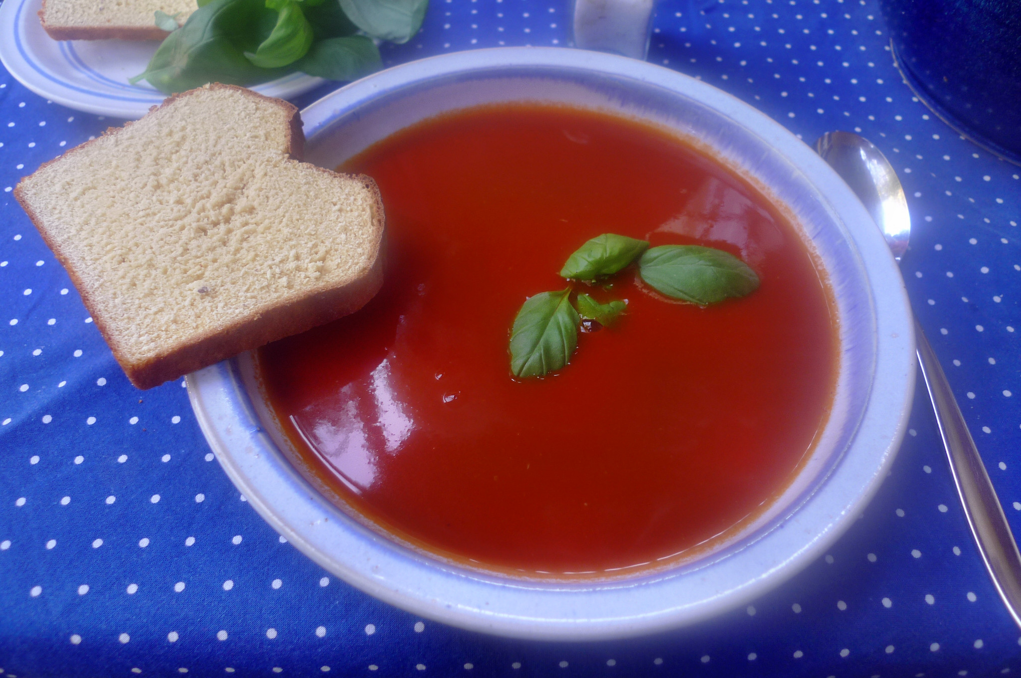 Tomatensuppe-3.10.14   (7)