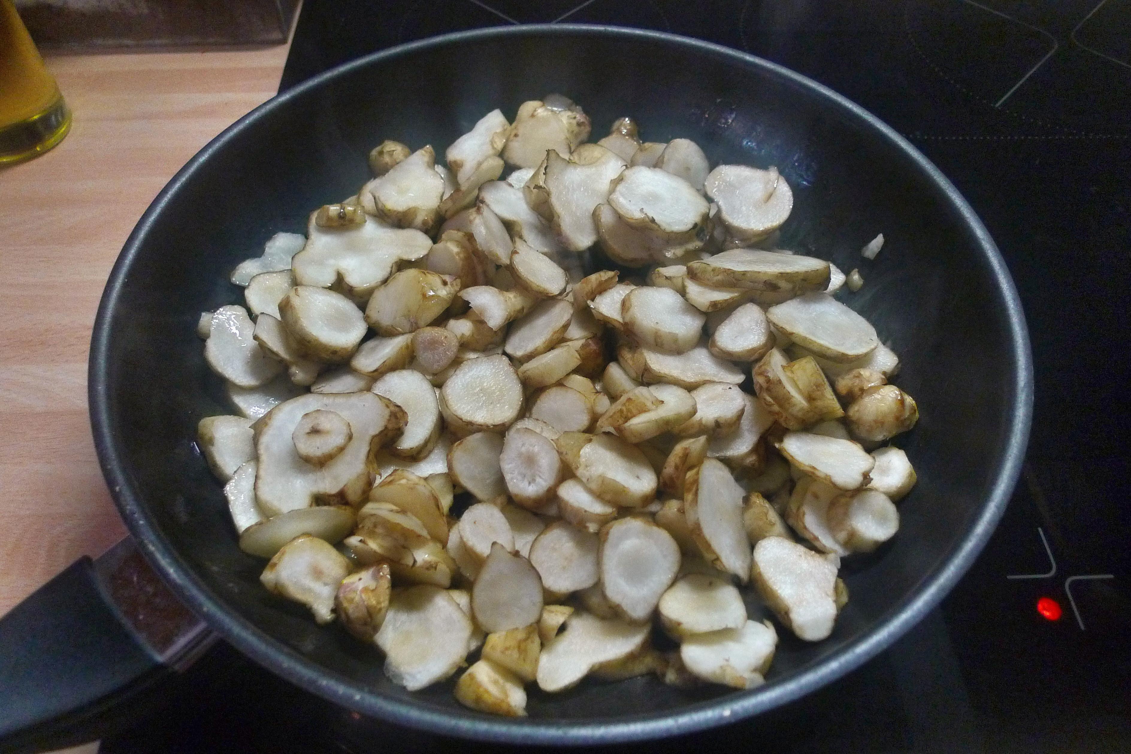 Topinambur-Kohlrabisalat-Gebratene Tomaten-Lachs - 23.10.14   (14)