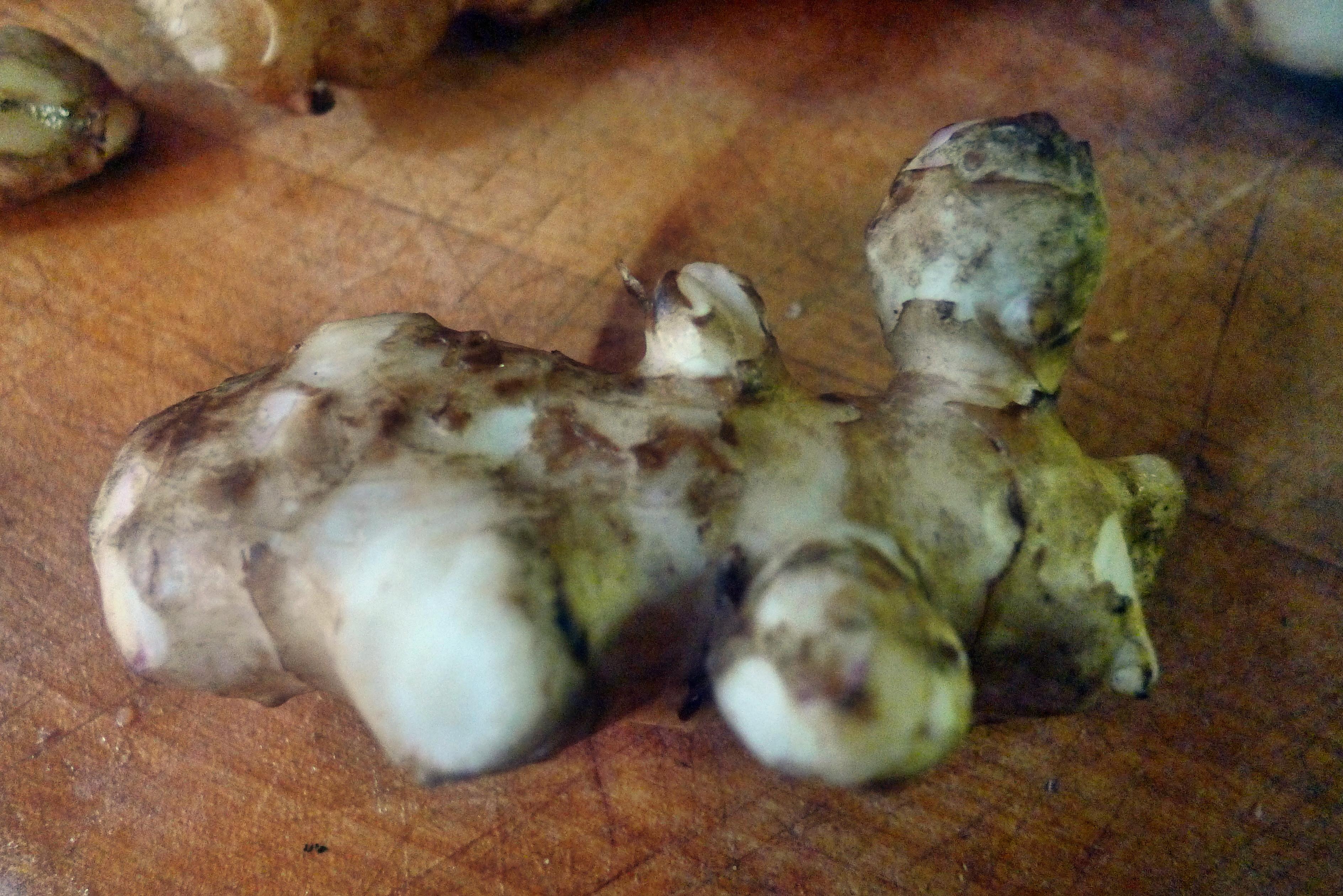 Topinambur-Kohlrabisalat-Gebratene Tomaten-Lachs - 23.10.14   (9)