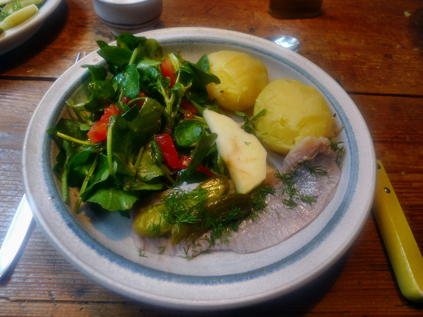 Matjes,Kressesalat,Feldsalat,Kartoffeln - 5.11.14   (5)