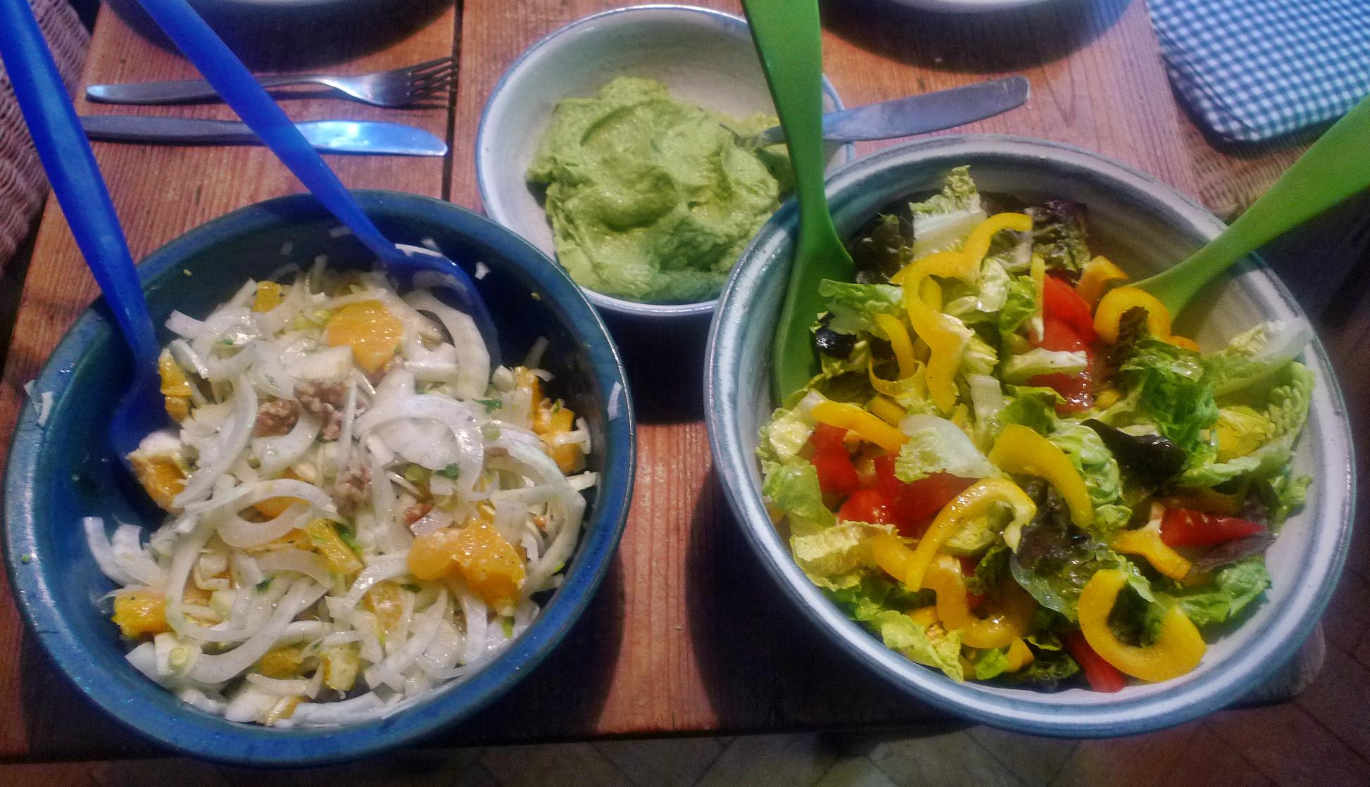 Guacamole,Fenchelsalat,Salat,Bratkartoffel--22.1.15   (9)