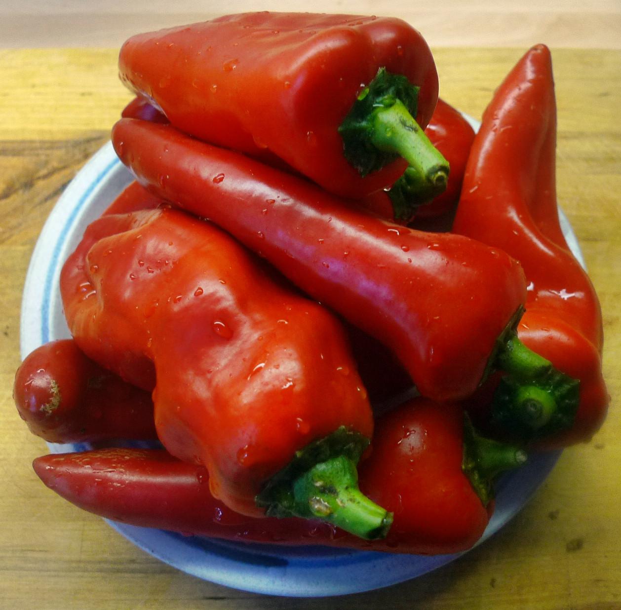 Paprika mit Quinoa -31.1.15 (1)