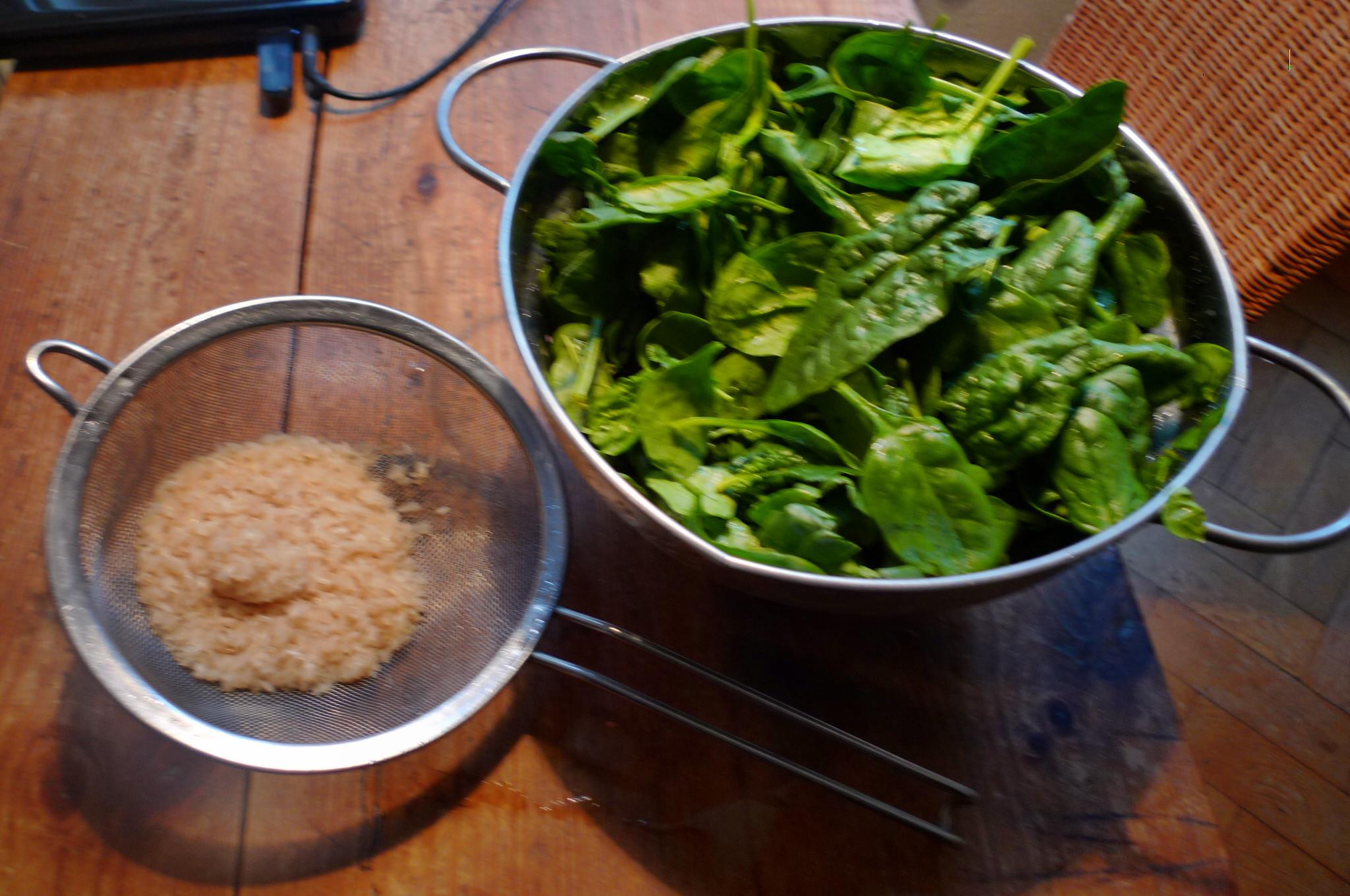 Spinat-Joghurtsuppe-4.1.15   (2)