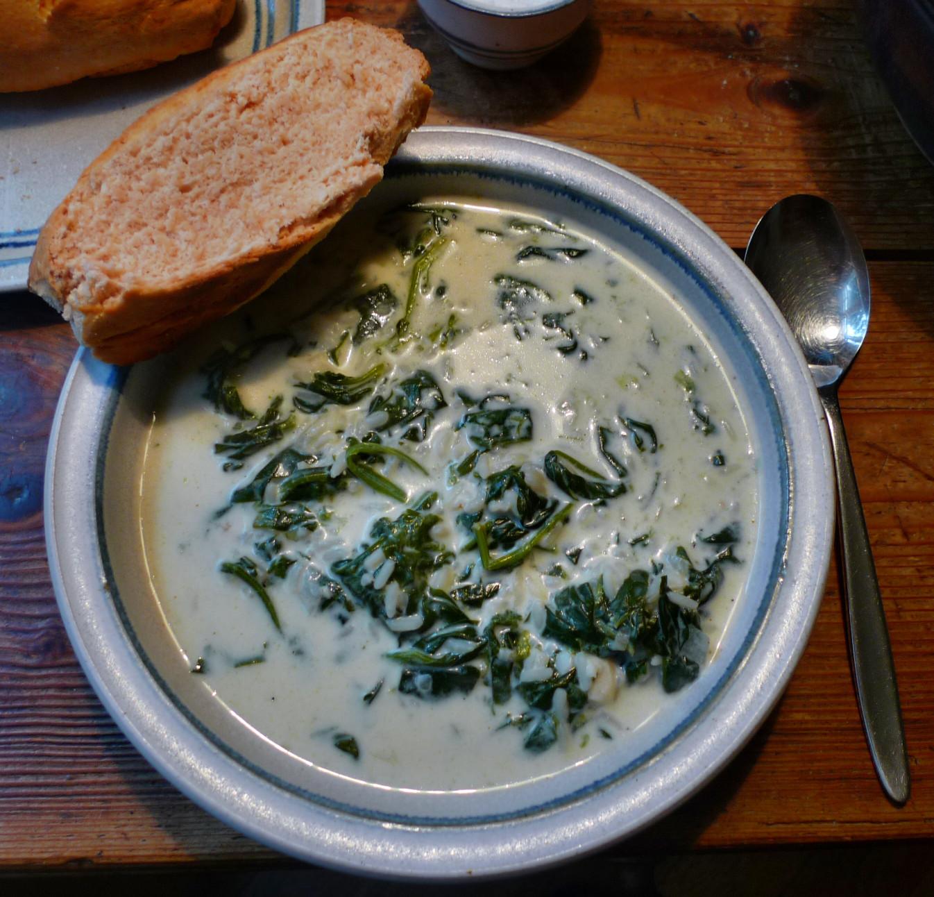 Spinat-Joghurtsuppe-4.1.15   (8)