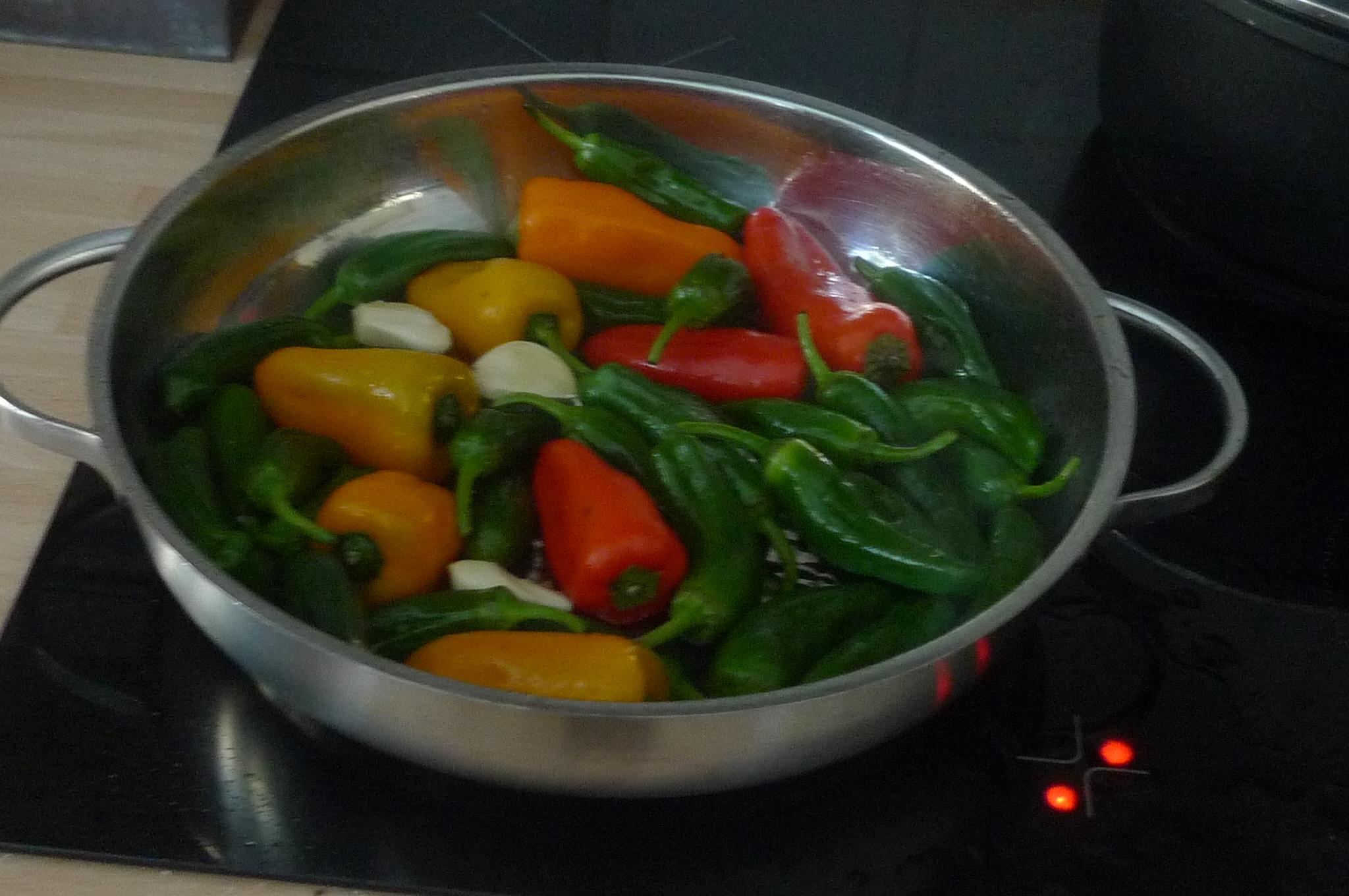 Pimientos(Bratpaprika)Tomaten,Linguini -7.1.15  (4)