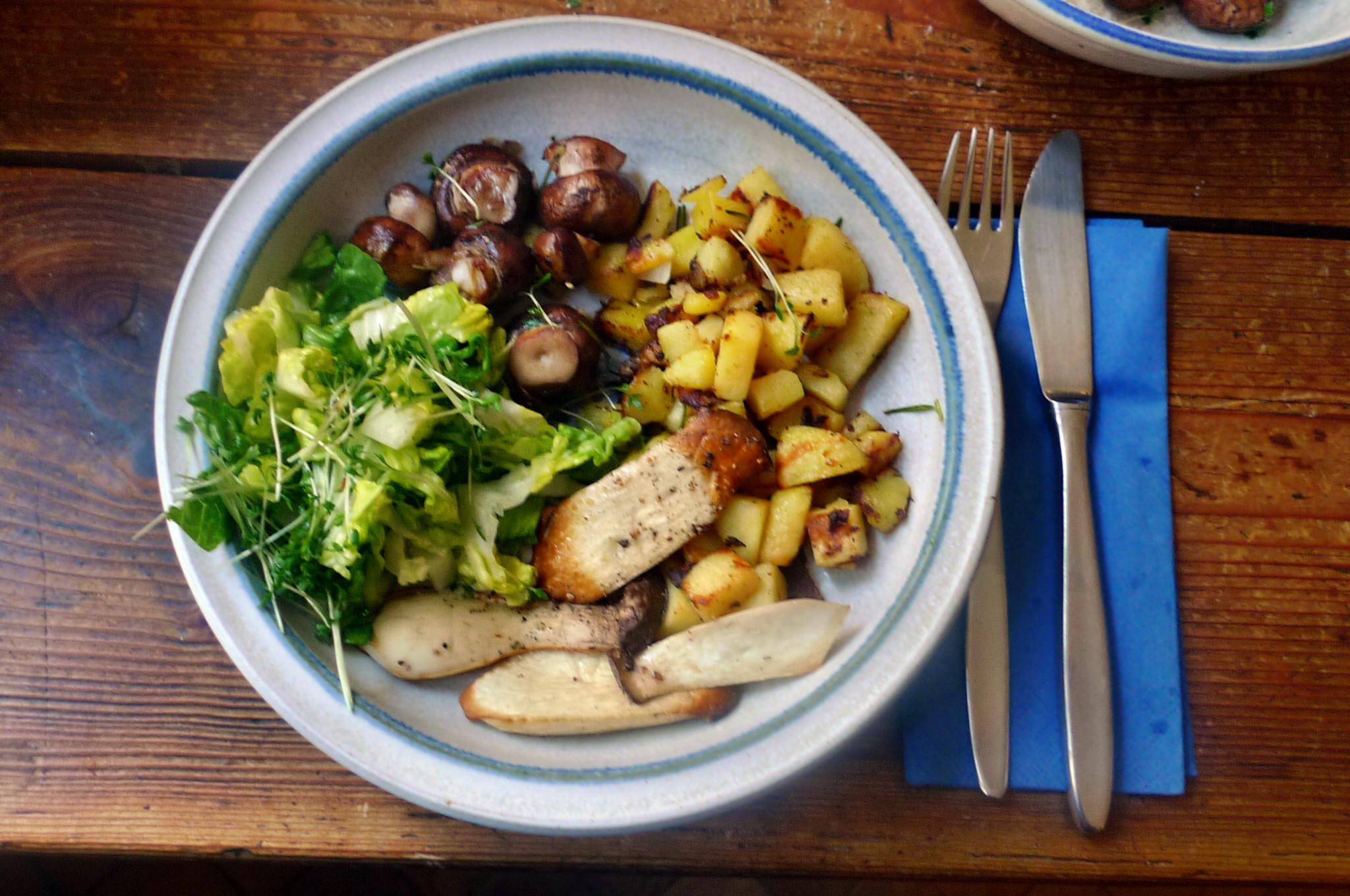 Roh gebratene Kartoffeln,Kräutersaitlinge,Champignon,Römersalat - 26.2.15   (12)