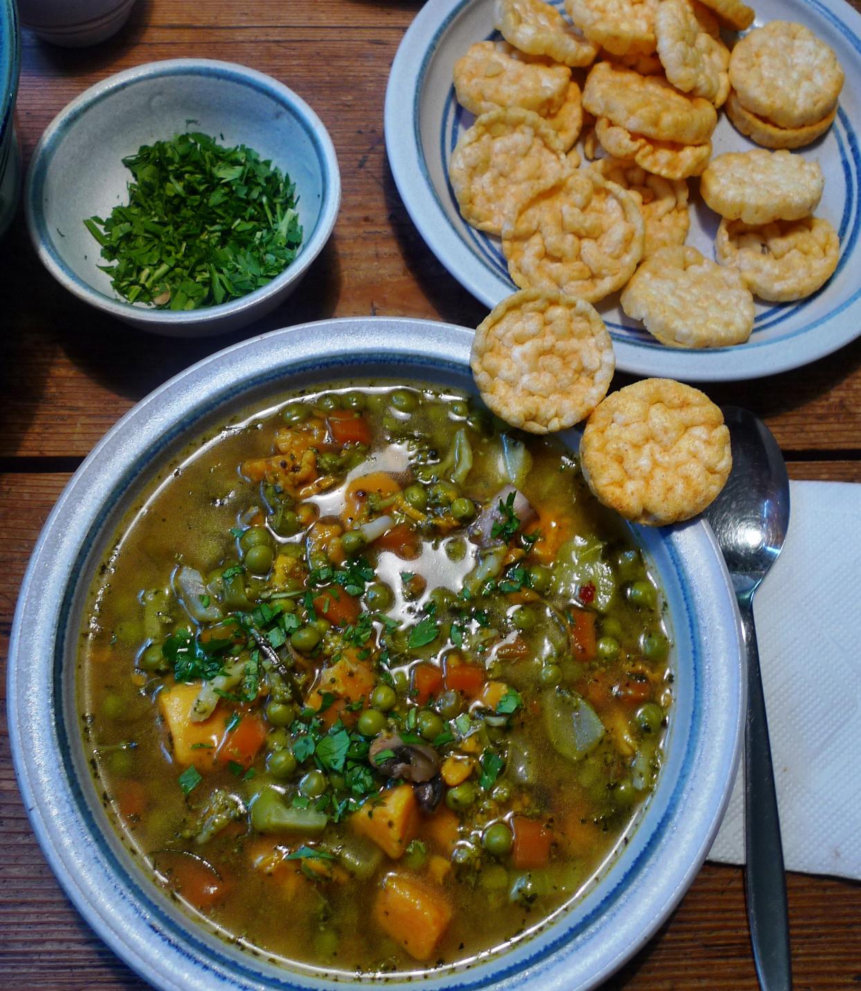Gemüsesuppe mit Cräcker-6.3.15   (15)
