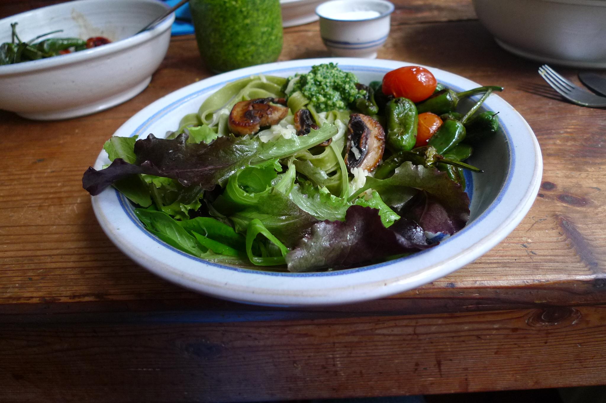 Grüne Nudeln,Ruccolapesto,Pilze,Bratpaprika,Salat-8.3.15   (10)