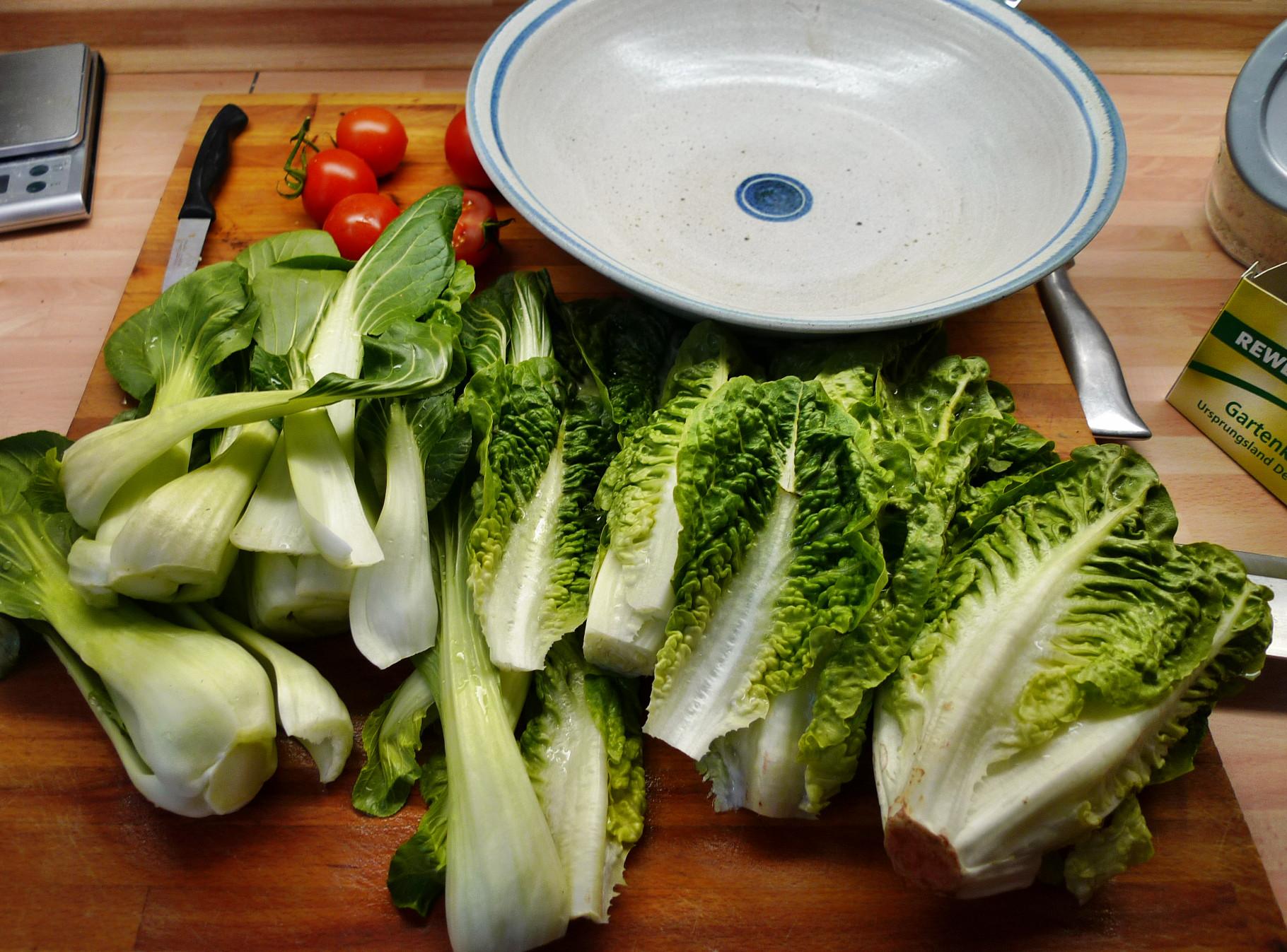 Nudeln mit Gorgonzola,Pak Choy,Salat, - 1.3.2015   (4)