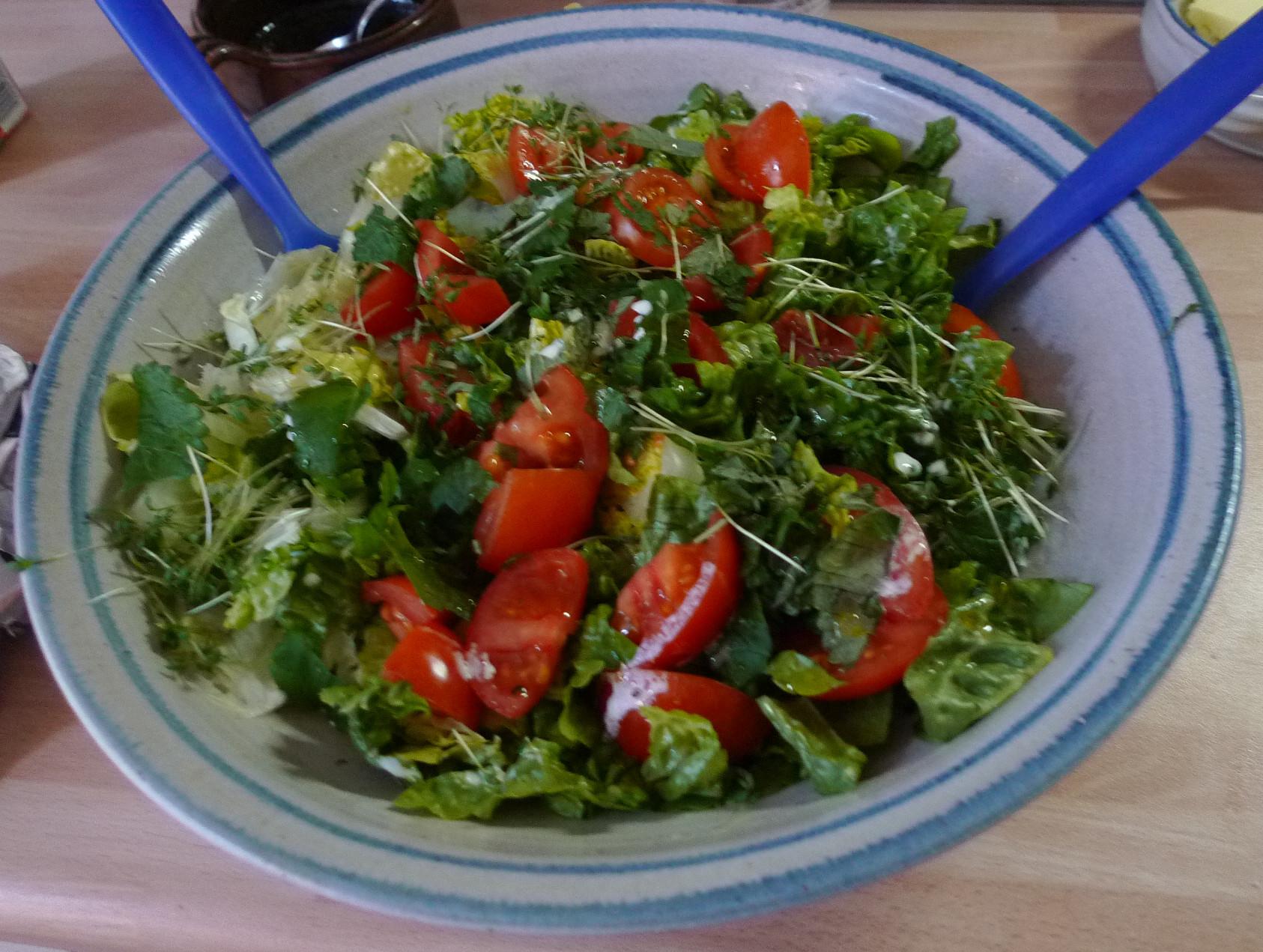 Nudeln mit Gorgonzola,Pak Choy,Salat, - 1.3.2015   (6)