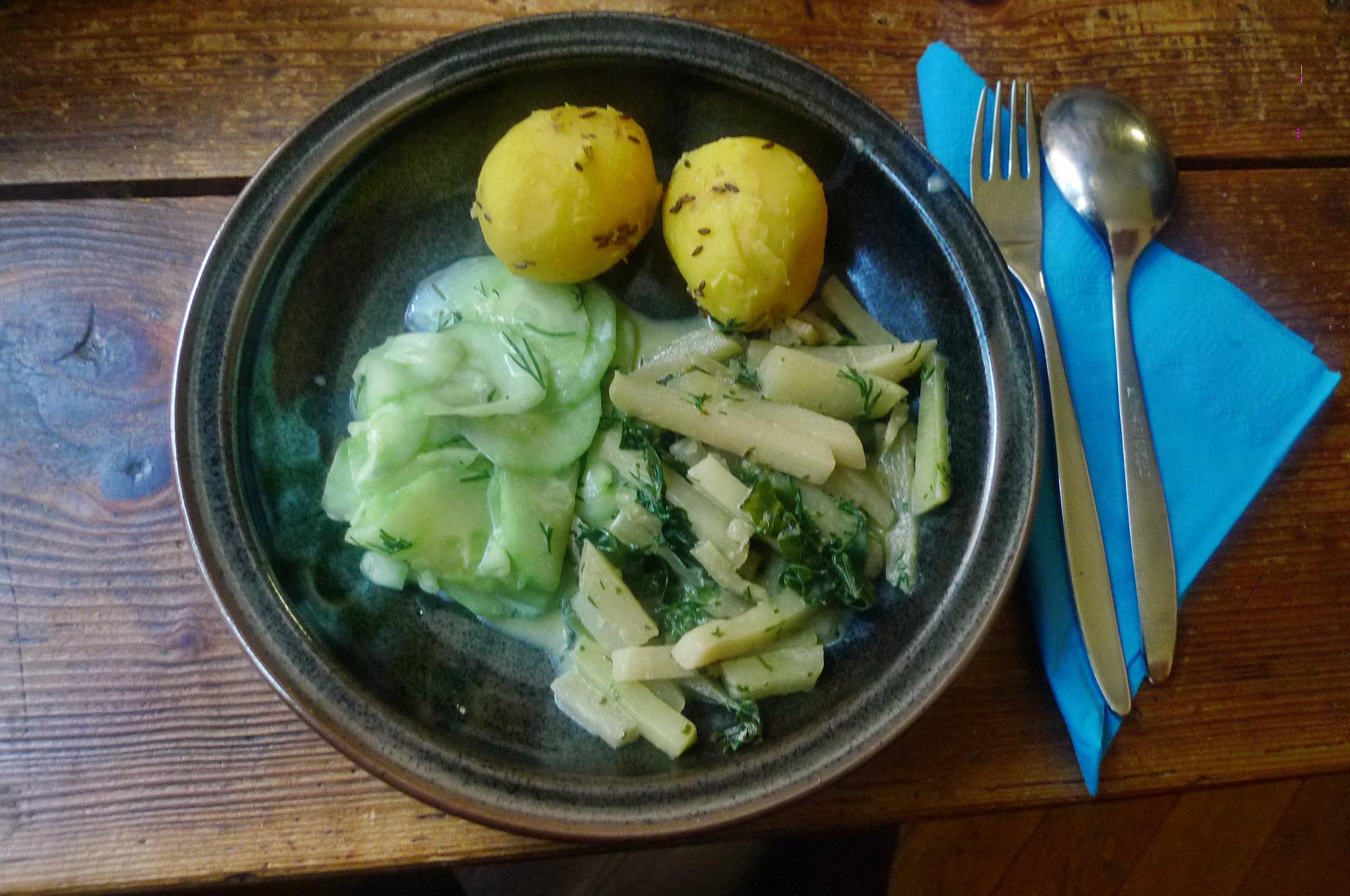 Selleriegemüse,Gurkensalat,Kartoffeln,Quarkspreise-19.3.15   (11)