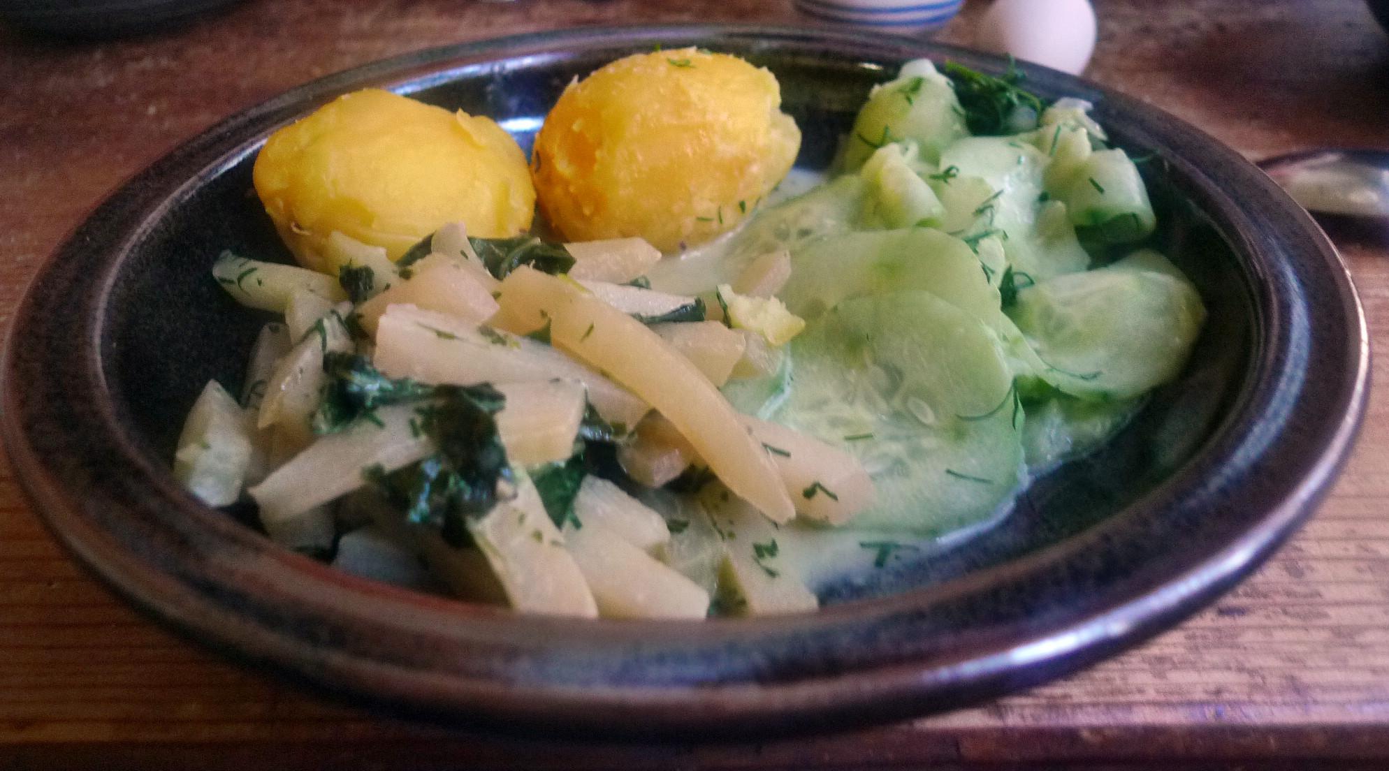 Selleriegemüse,Gurkensalat,Kartoffeln,Quarkspreise-19.3.15   (15)
