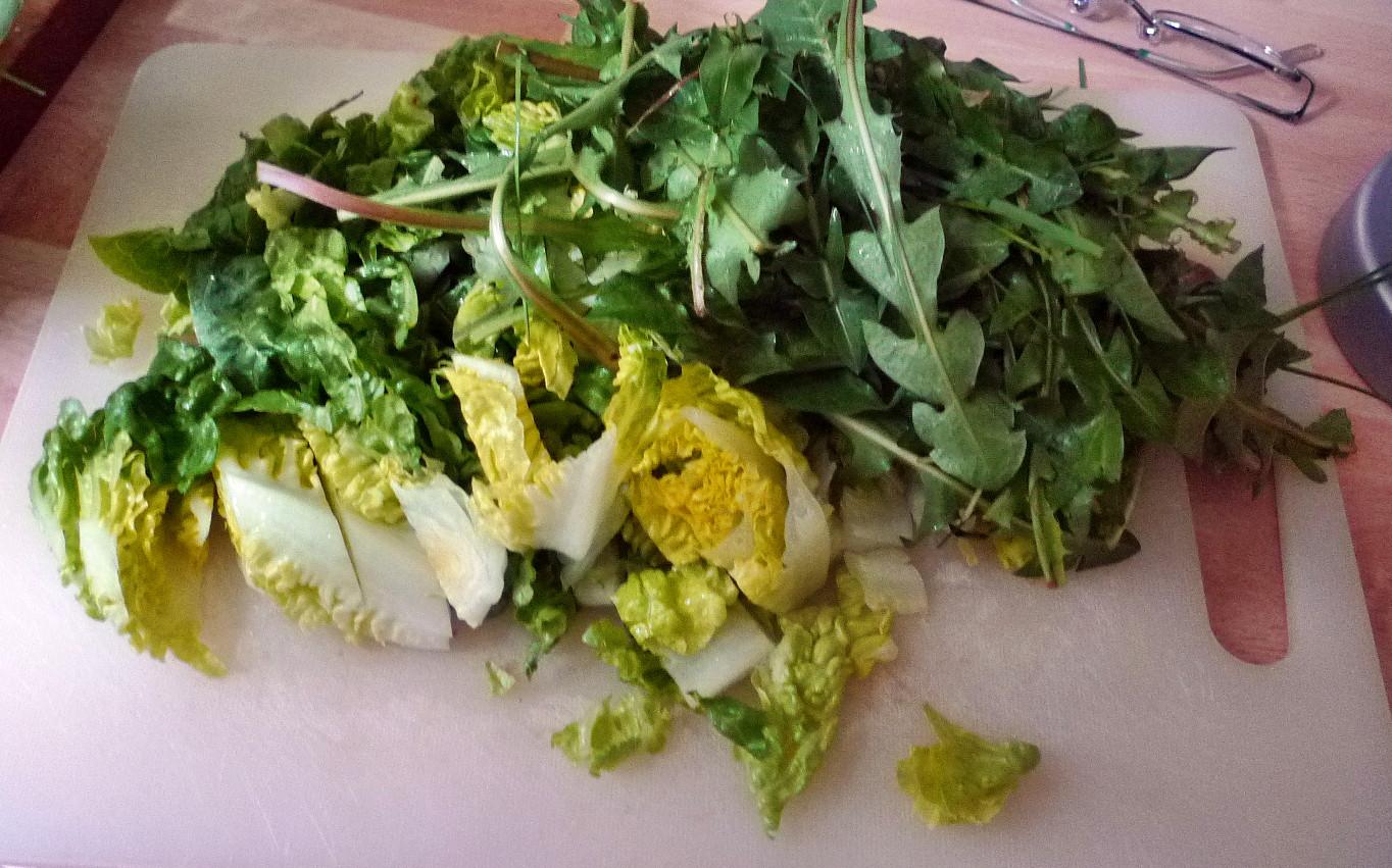 Lachs,Spargel,Salat,Kartoffeln - 25.4.15   (3)