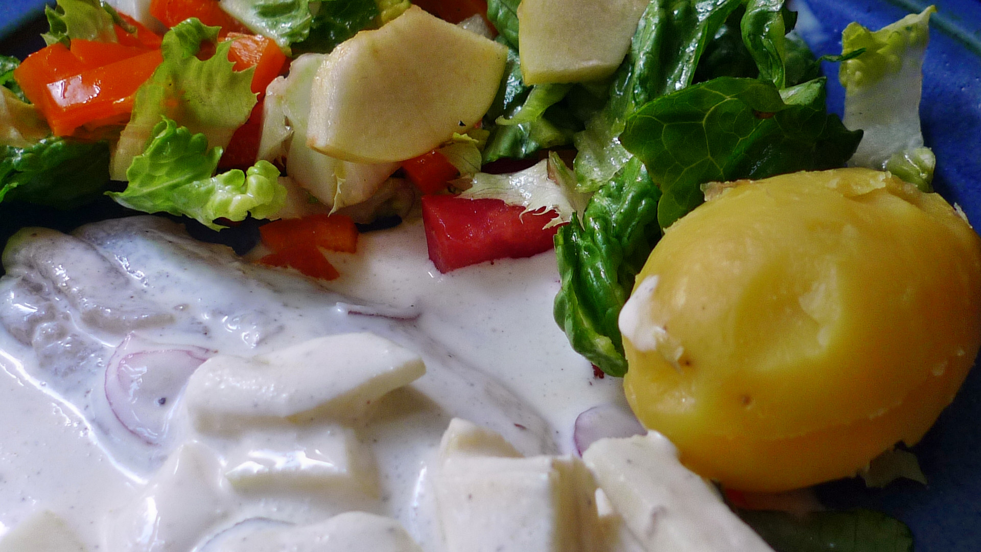 Marinierter Hering,Kartoffeln,Salat, - 14.4.15   (11)