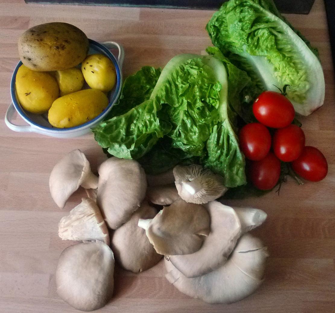 Shitakepilze, Bratkartoffel,Salat -28.4 (1)