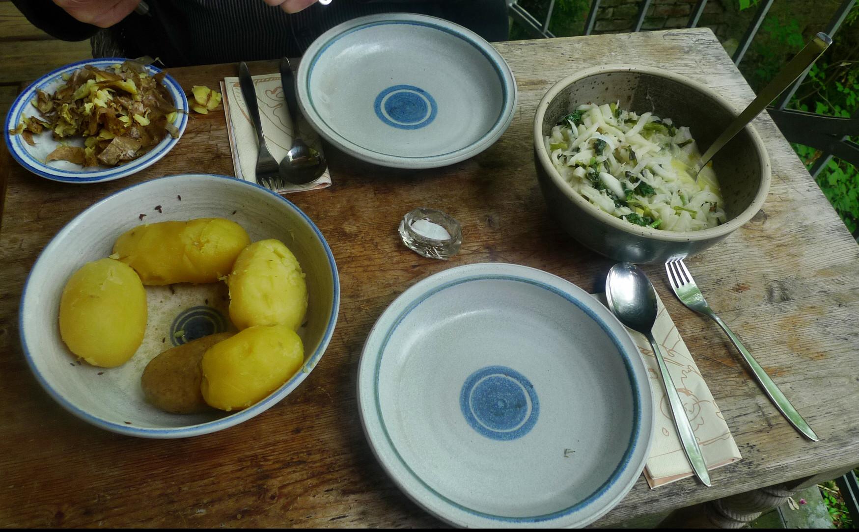 Mairübchen,Kartoffeln - 8.5.15   (6)