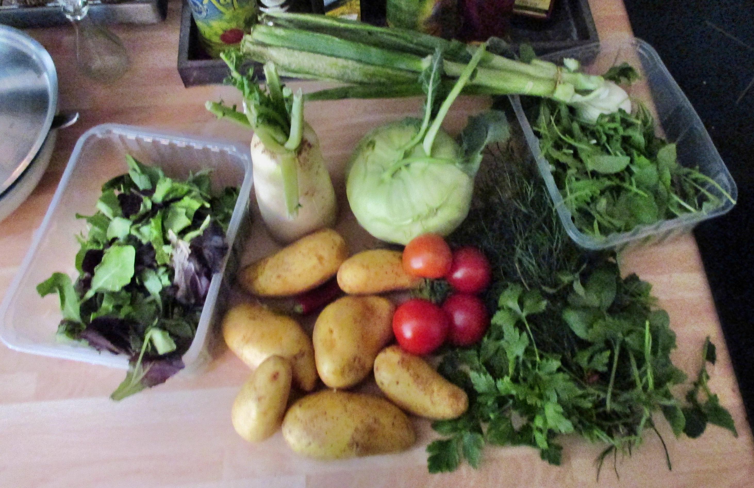Quark,Kartoffel,Salate,-23.6.15   (1)