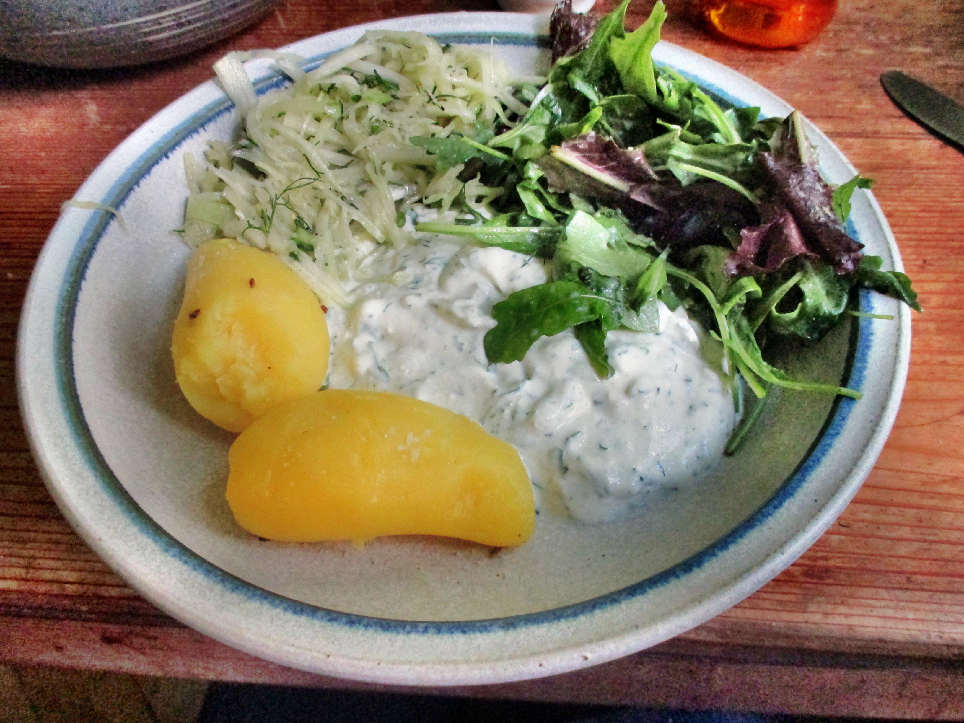 Quark,Kartoffel,Salate,-23.6.15   (12)