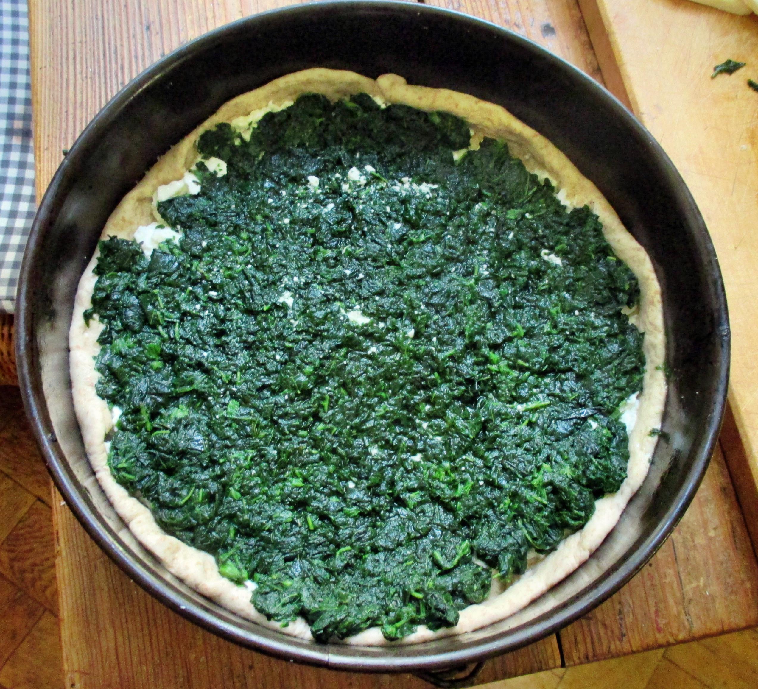 Spinatpizza -29.6.15 (11)