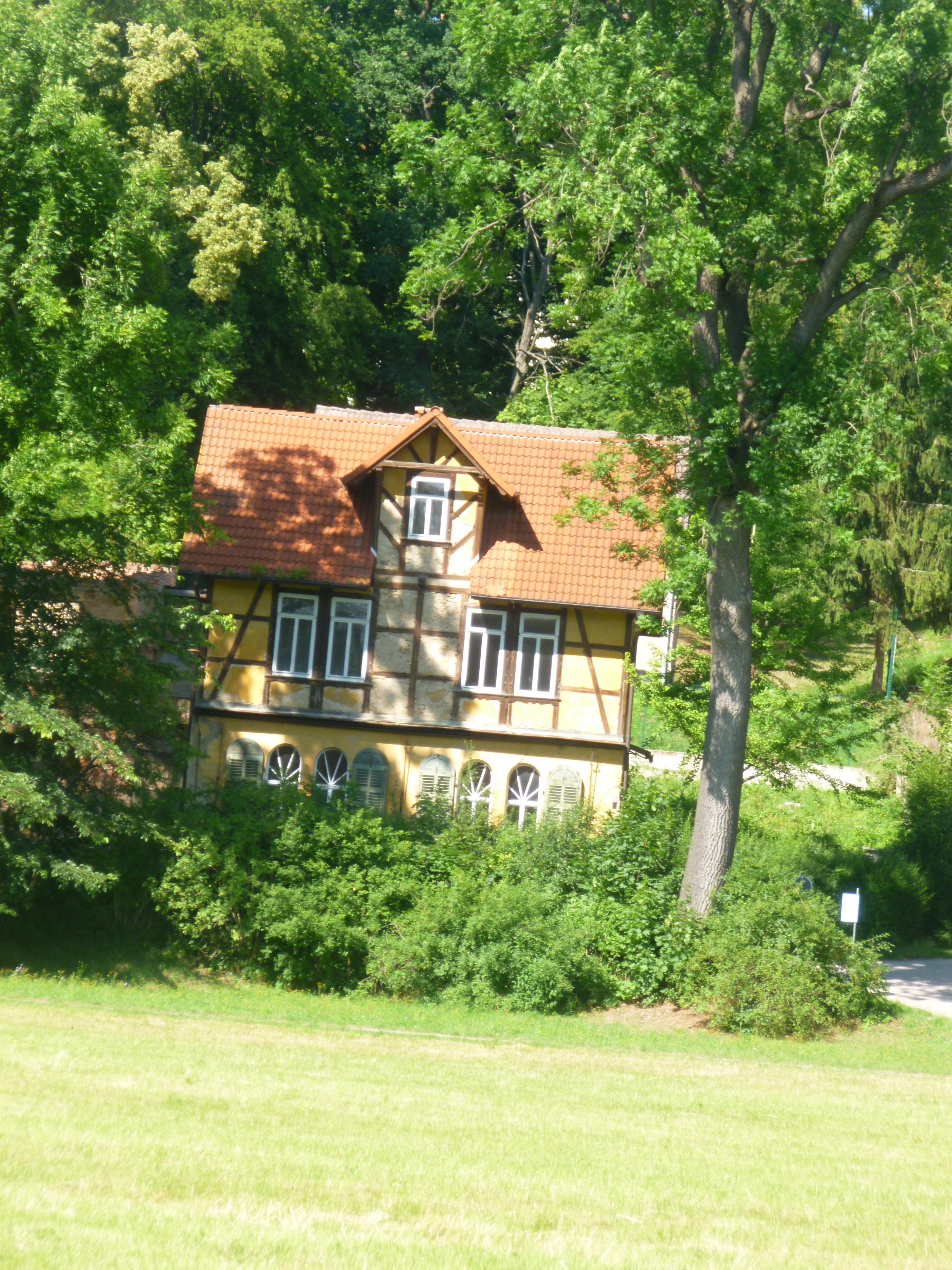 Goethepark - 6.7.15   (3)