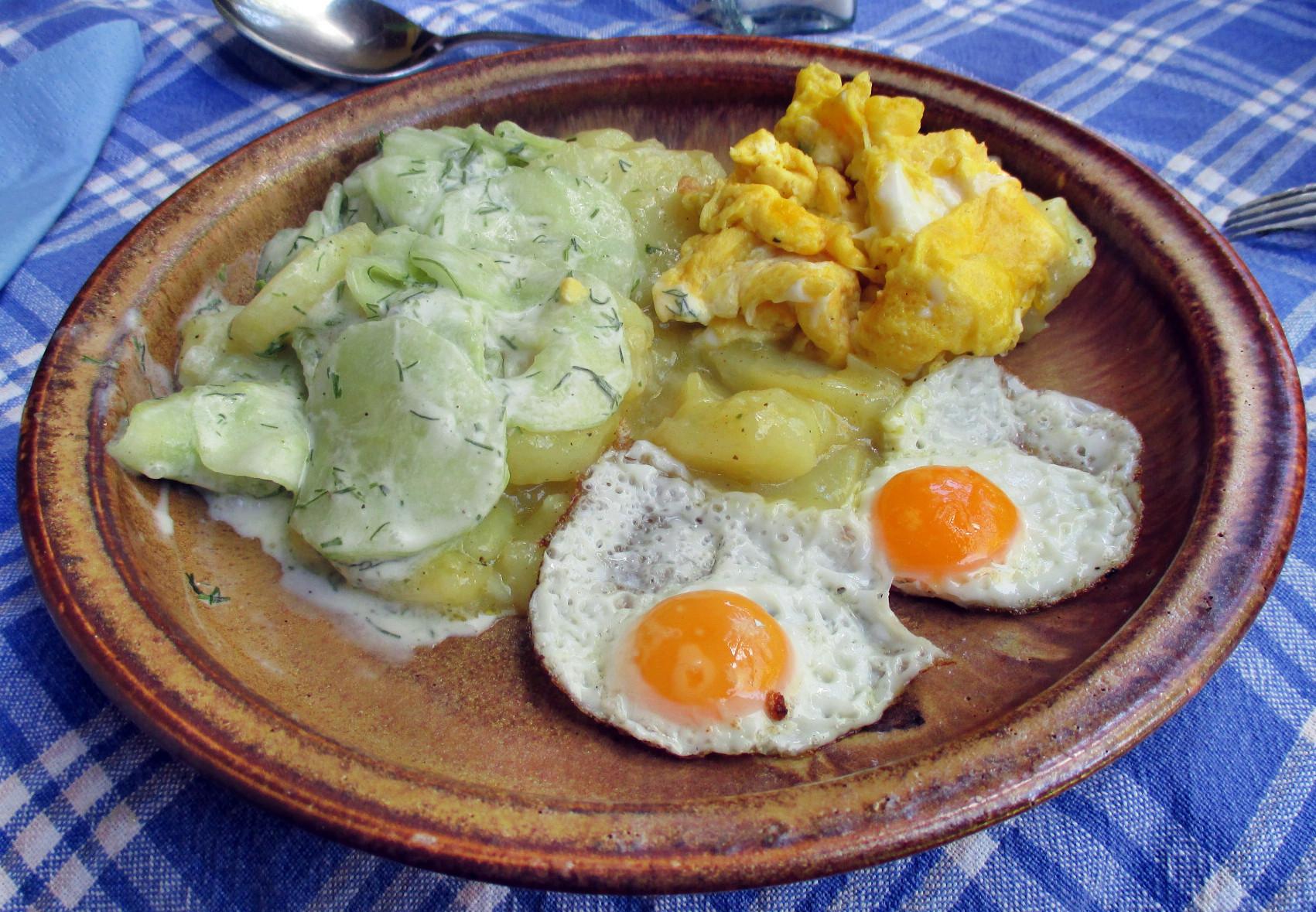 Kartoffelsalat,Ei,Gurkensalat - 25.7.15   (13)