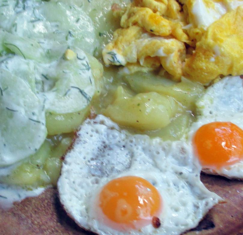 Kartoffelsalat,Ei,Gurkensalat - 25.7.15   (18)